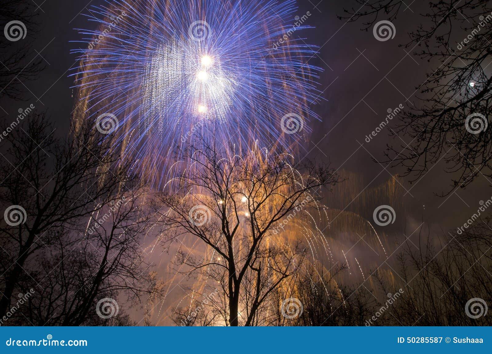 Πυροτεχνήματα στον ουρανό επάνω από τα δέντρα