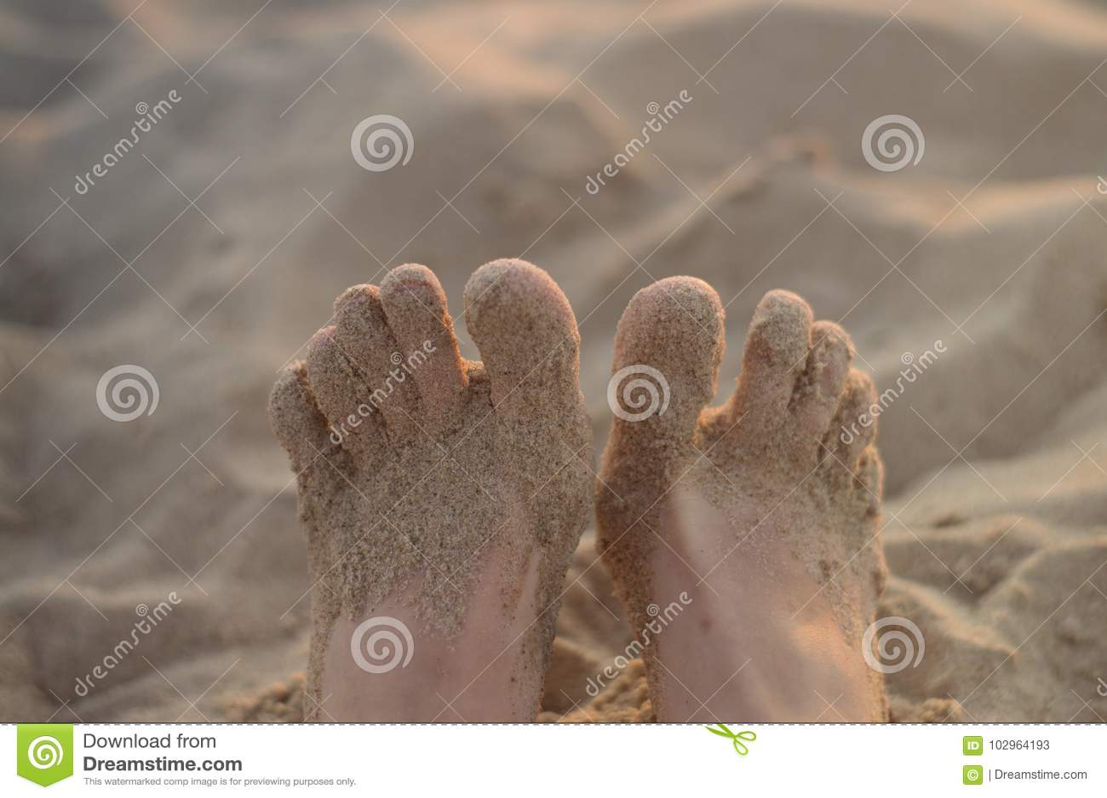 9820a9114e Πόδια γυναικών στην παραλία άμμου Στοκ Εικόνα - εικόνα από άτομα ...