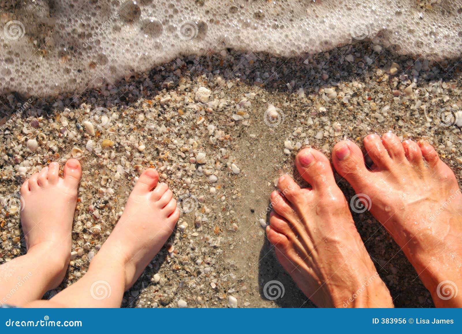 πόδια κυματωγών