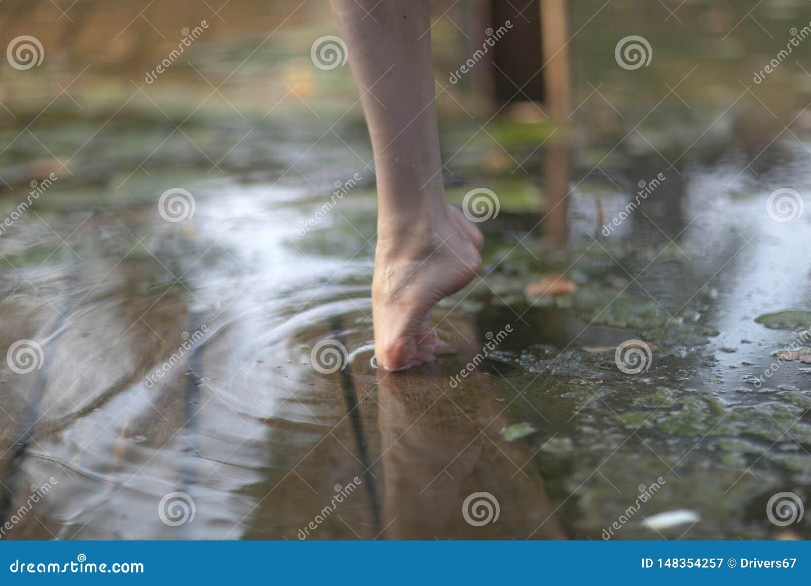 Πόδια ballerina tiptoe o