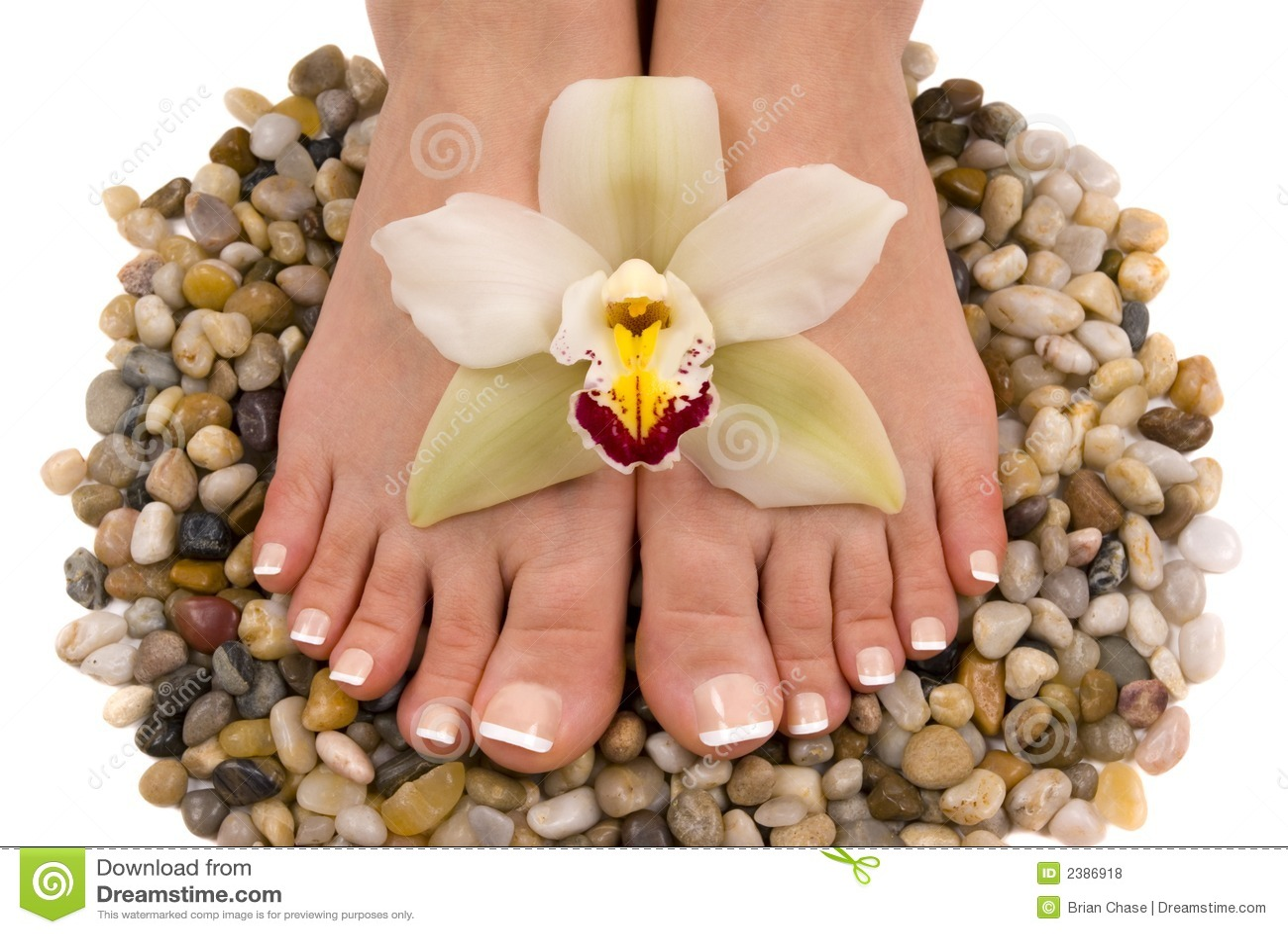 πόδια orchid