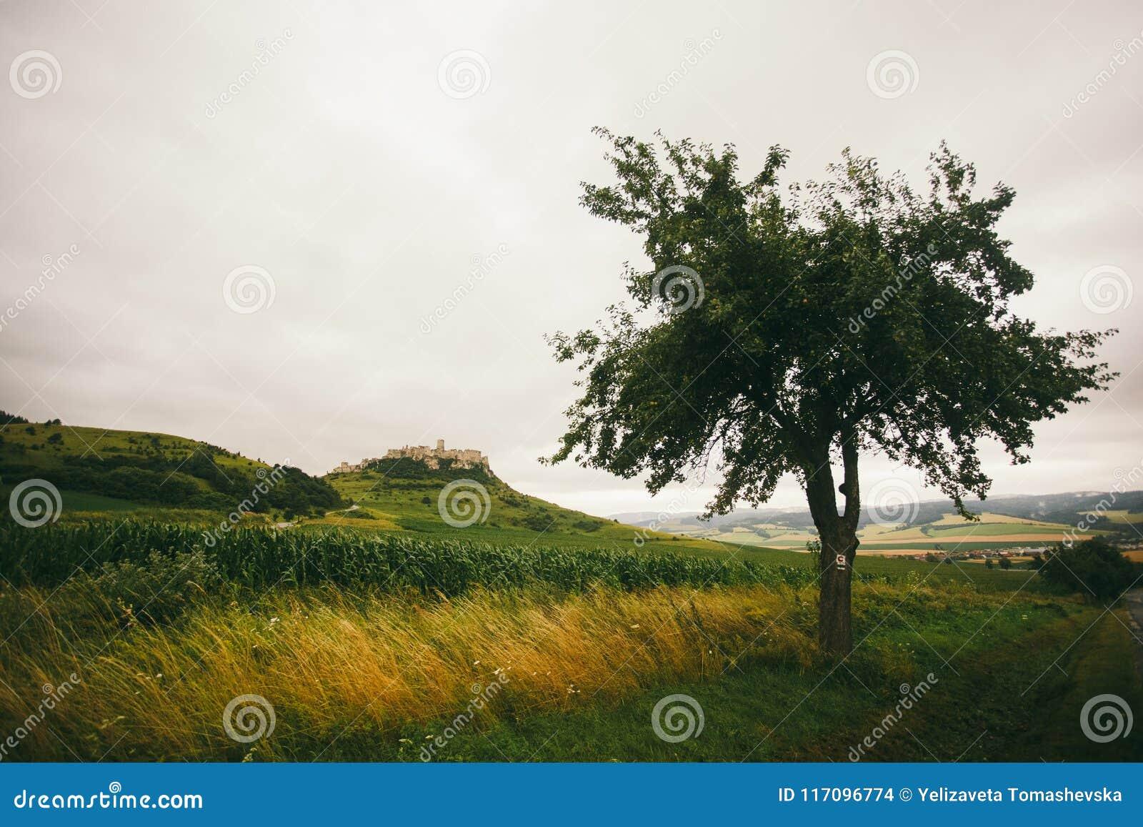 Πόλη και Spis Castle Spissky Podhradie Spisske hrad, περιοχή Presov, της Σλοβακίας Άποψη του κάστρου από το δρόμο που οδηγεί στον