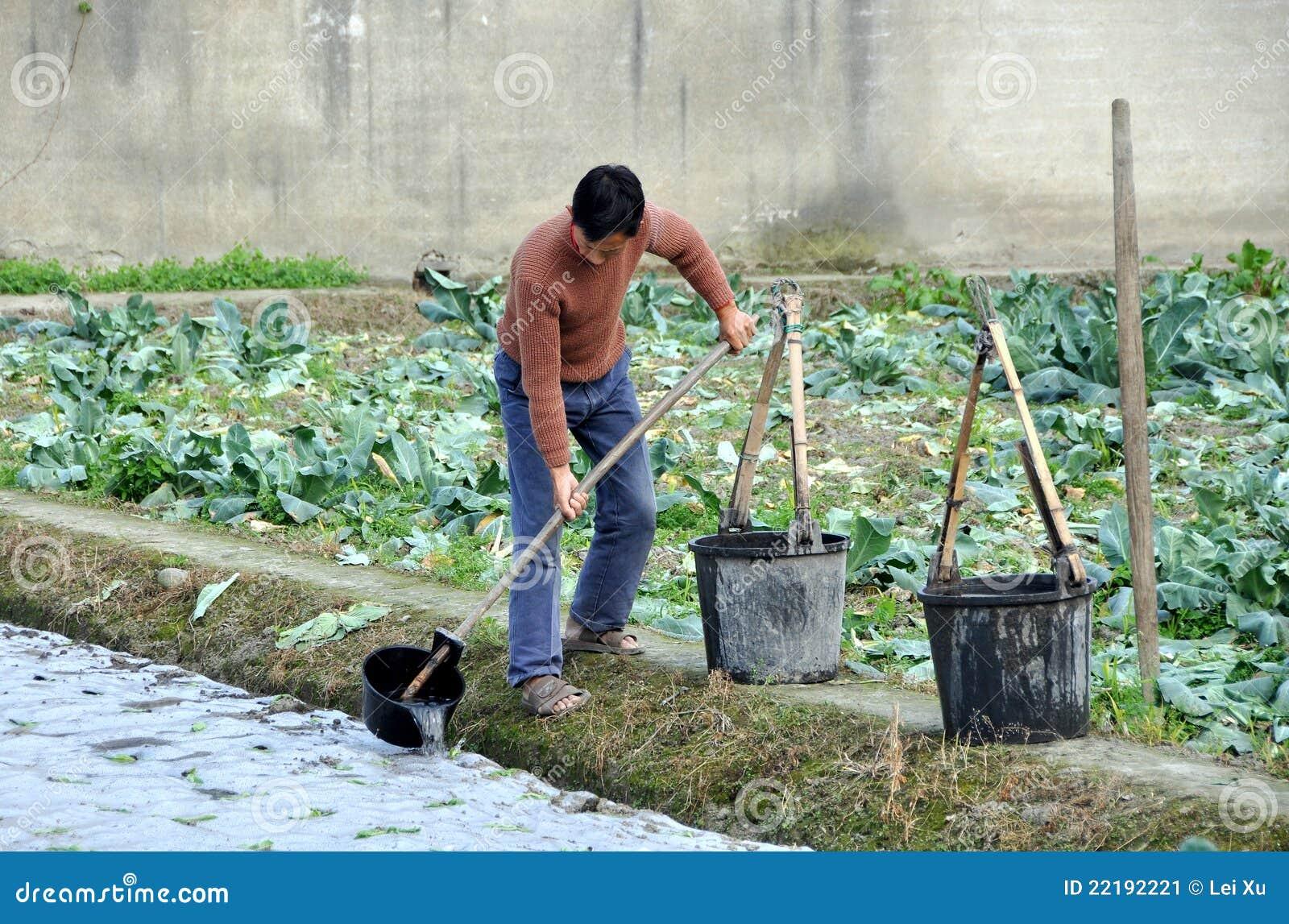 πότισμα σποροφύτων pengzhou αγρο&