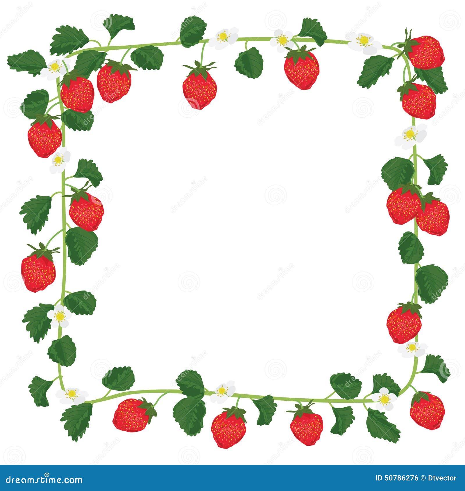 Πλαίσιο φρούτων φραουλών