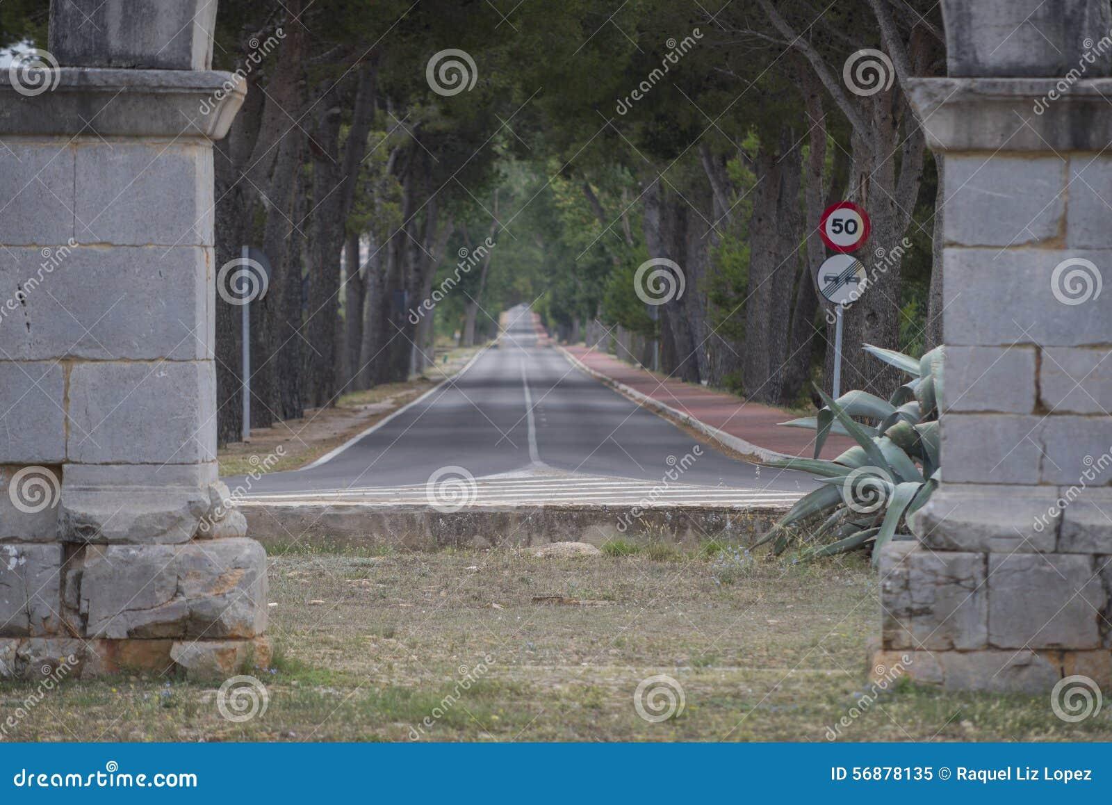 Πλαισιωμένος δρόμος