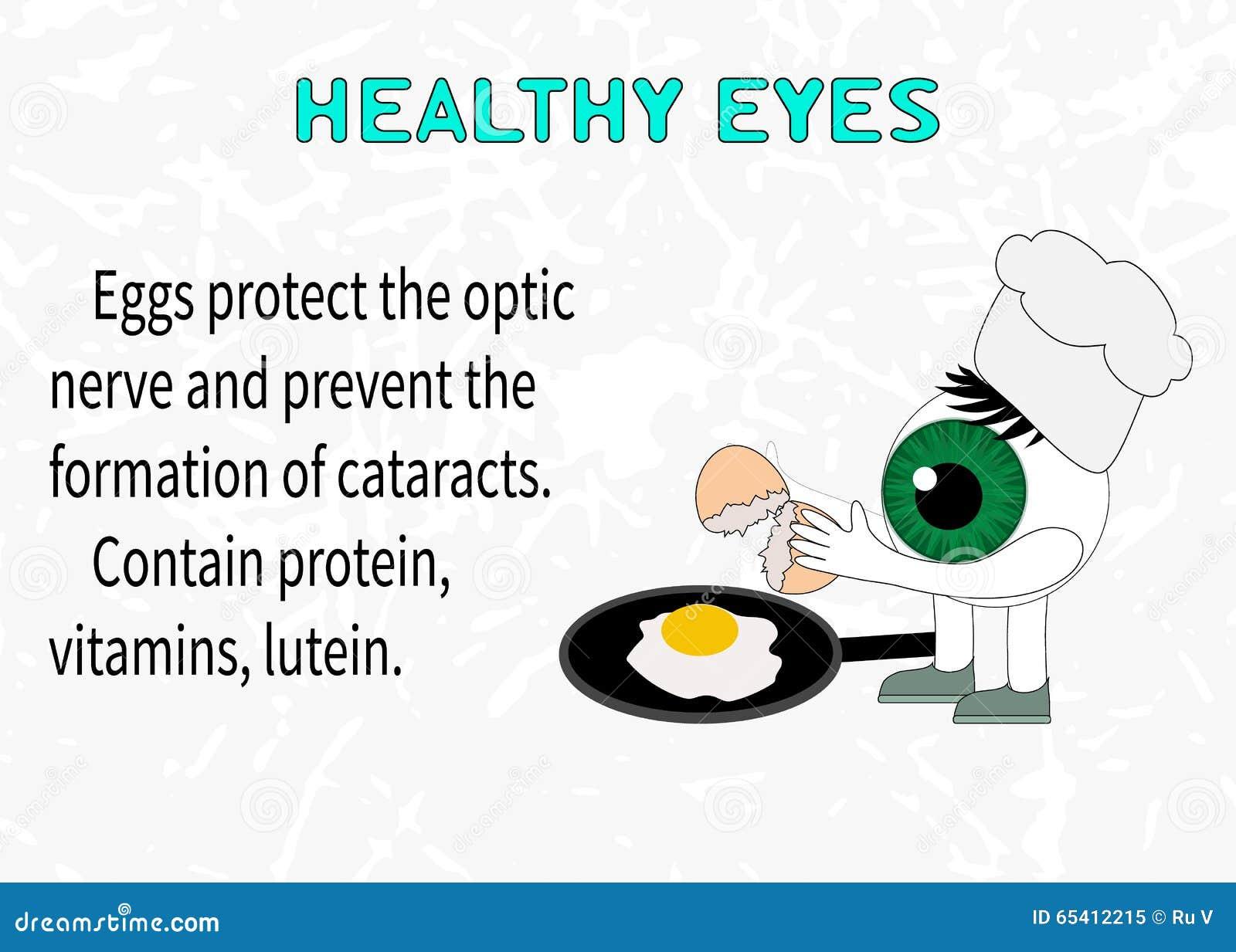 e25c513466 Πληροφορίες για τα οφέλη των αυγών για την όραση Διανυσματική ...