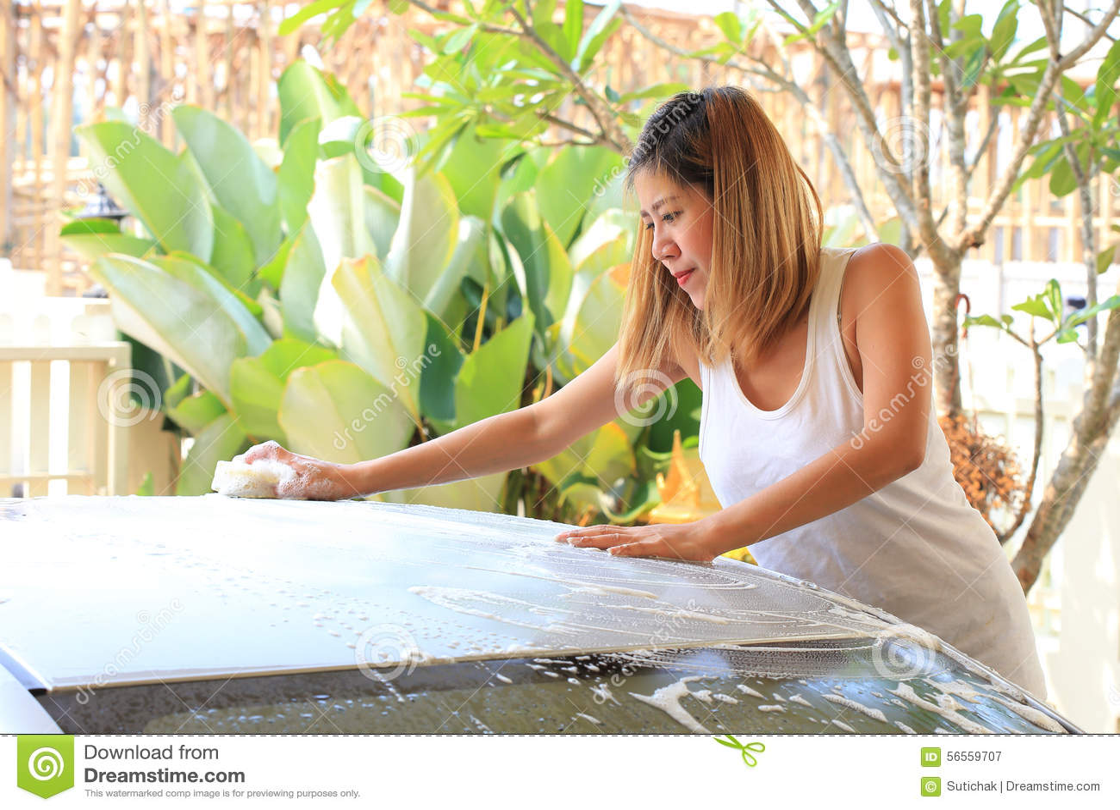 Download Πλύσιμο αυτοκινήτων, αυτοκίνητο πλύσης γυναικών Στοκ Εικόνα - εικόνα από γκρίζος, σφουγγάρι: 56559707