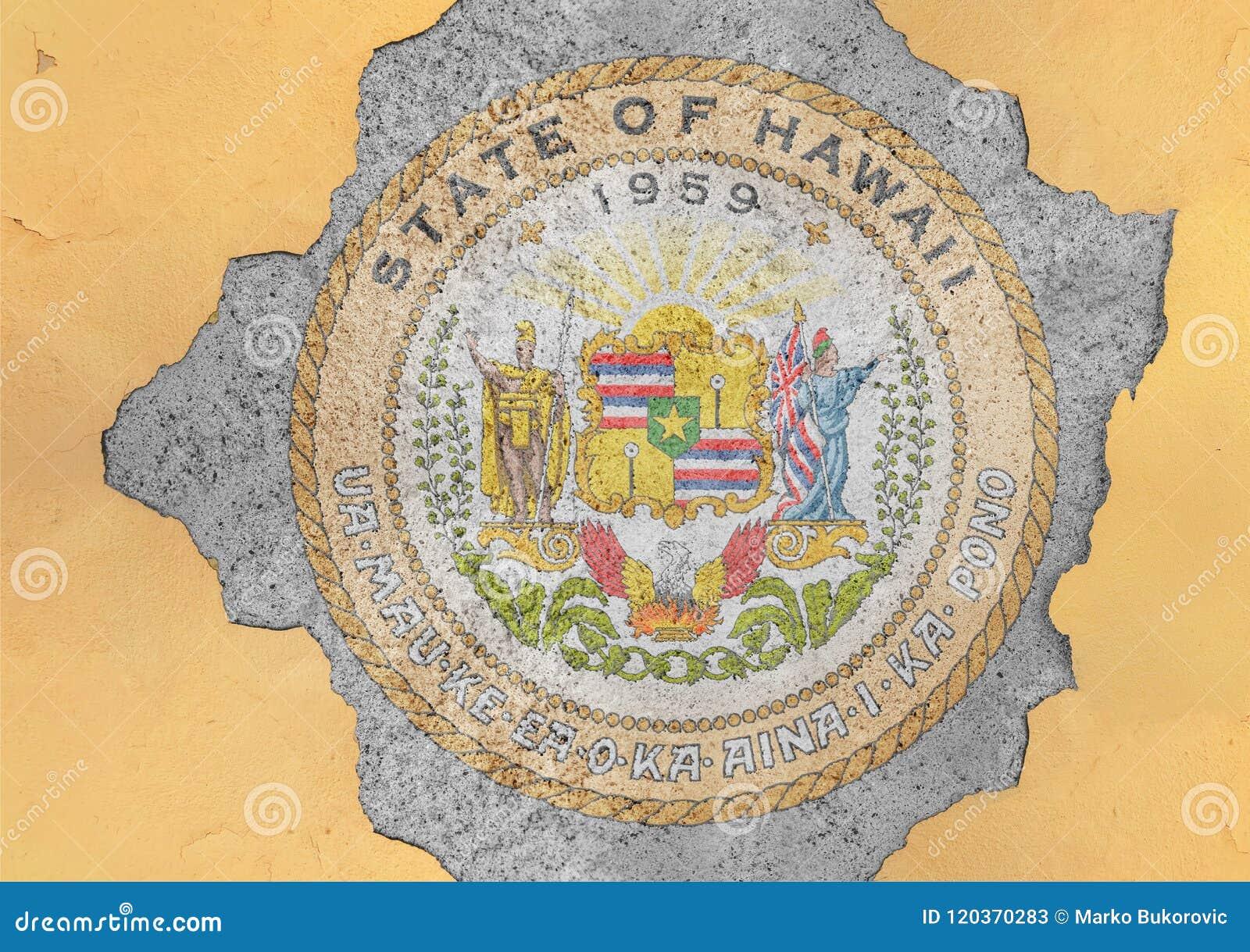 Ραγισμένη τρύπα με την περίληψη σημαιών σφραγίδων της Χαβάης αμερικανικού κράτους στον τοίχο προσόψεων