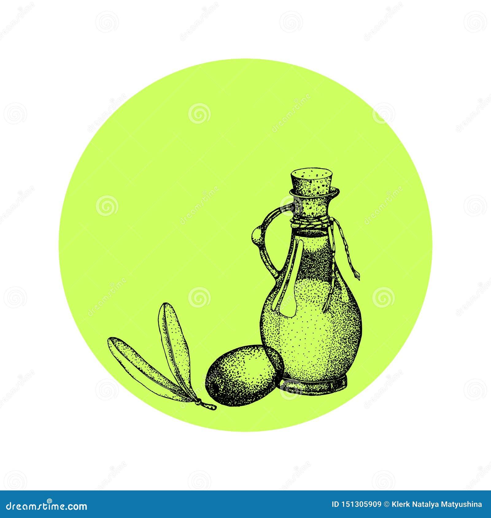 Ρεαλιστική απεικόνιση του μαύρου και πράσινου κλάδου ελιών που απομονώνεται στο άσπρο υπόβαθρο Σχέδιο για το ελαιόλαδο, φυσικό