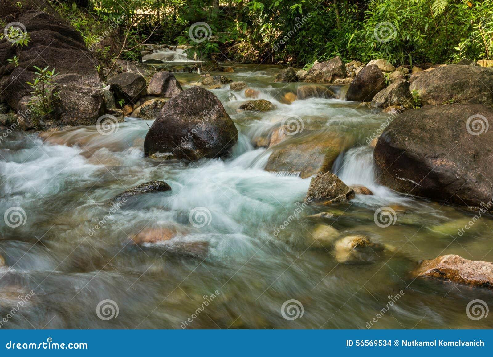 Download Ροή του sream στο πάρκο στοκ εικόνες. εικόνα από φθινοπώρου - 56569534
