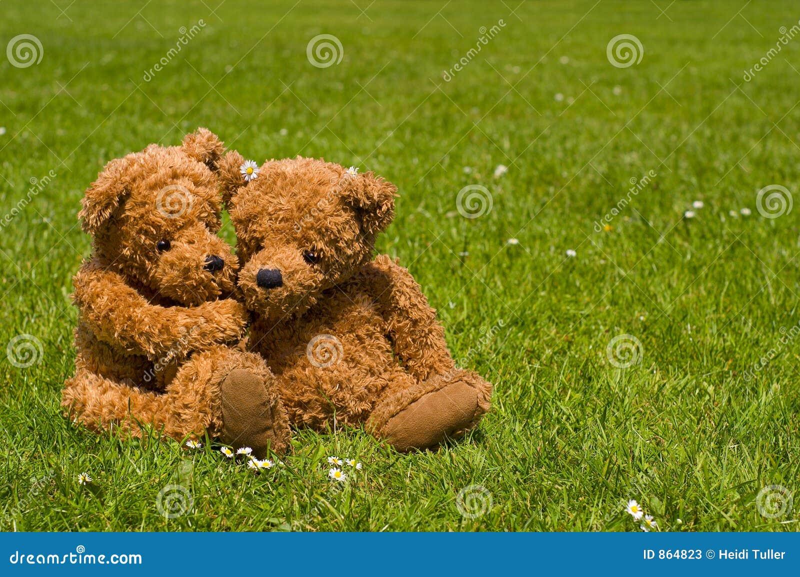 ρωμανικός teddybear