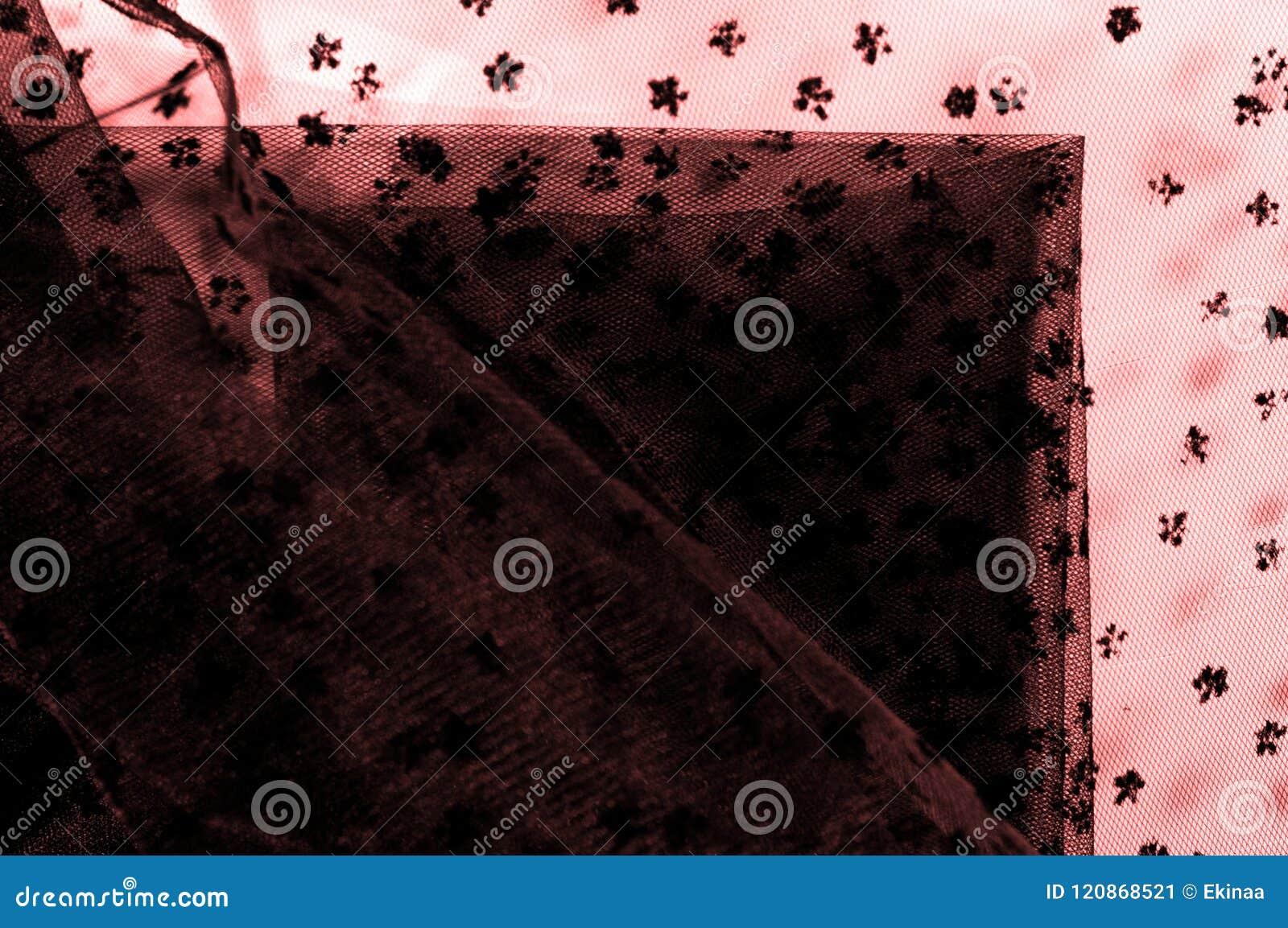 Ρόδινη δαντέλλα στο άσπρο υπόβαθρο Το Extravagance και η κομψότητα είναι COM