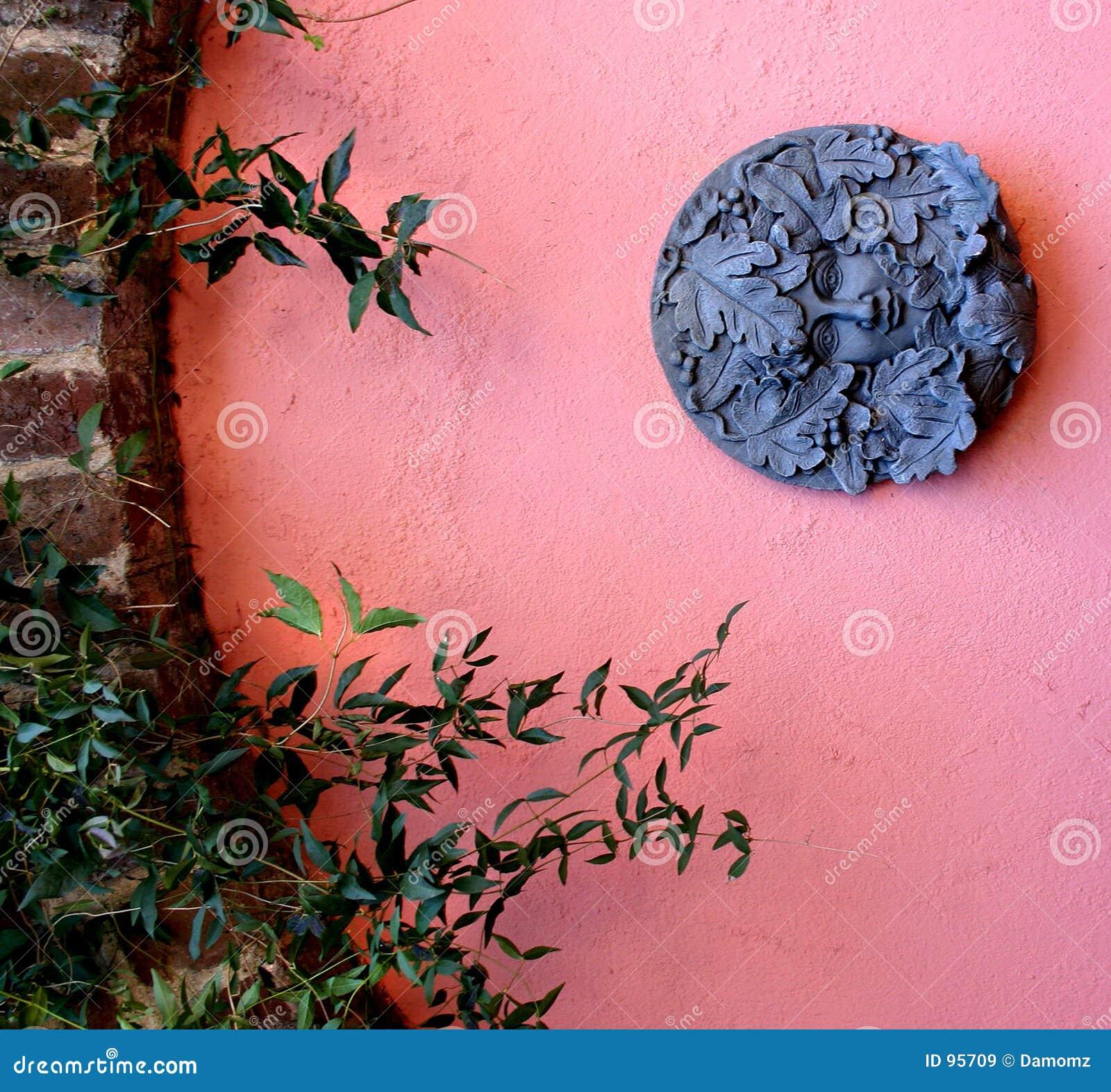ρόδινος τοίχος κήπων