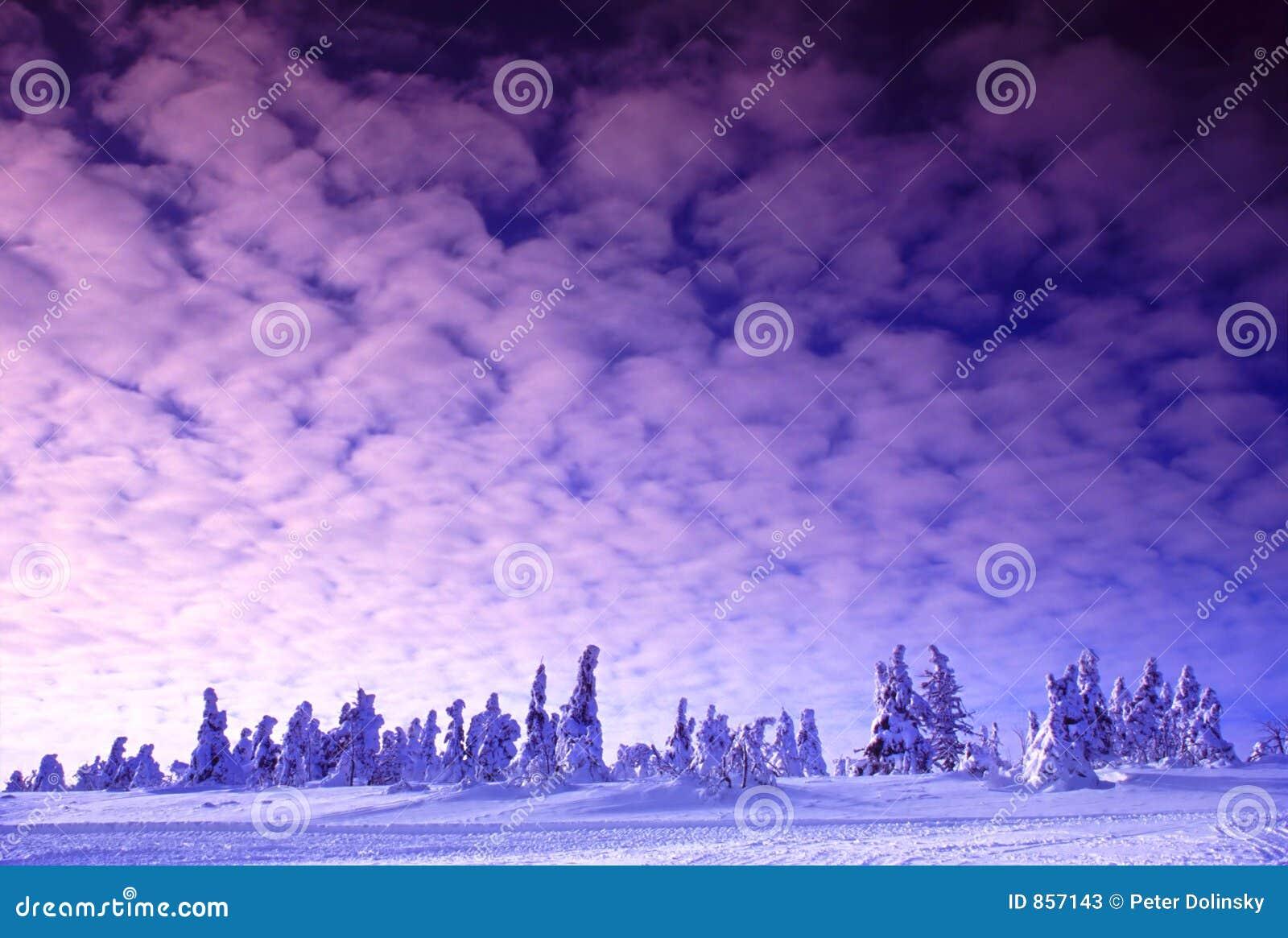 ρόδινος χειμώνας λυκόφατος