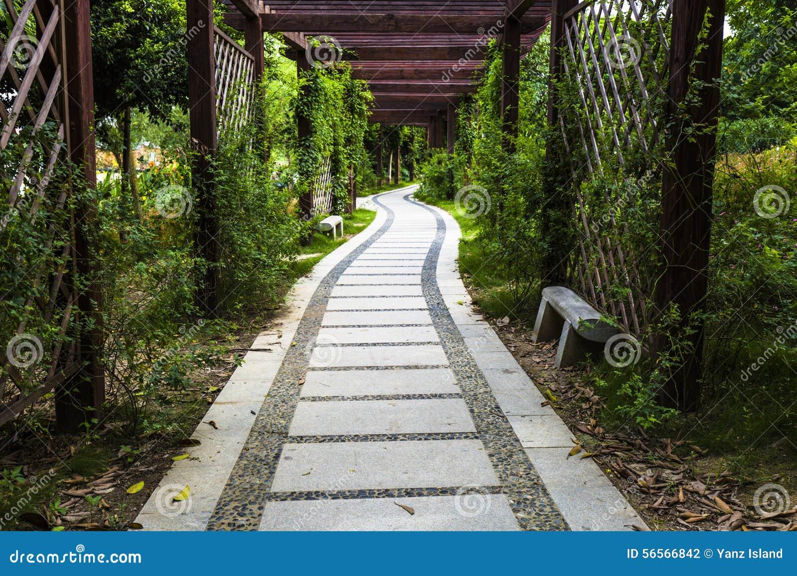 Download δρόμος πάρκων φθινοπώρου κίτρινος Στοκ Εικόνες - εικόνα από δέντρα, πράσινος: 56566842