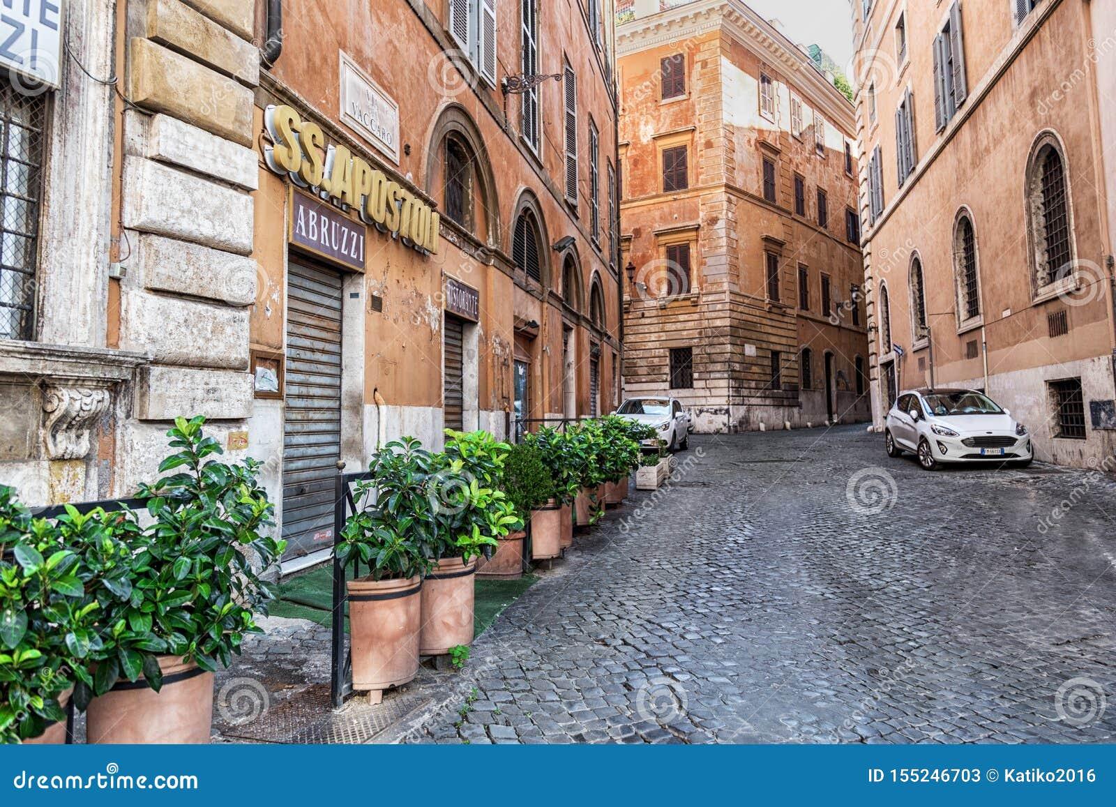 Ρώμη, Ιταλία - 22 Αυγούστου 2018: Χαρακτηριστική παλαιά ρωμαϊκή στενή οδός Πράσινες εγκαταστάσεις μπροστά από τα μικρά παράθυρα ε