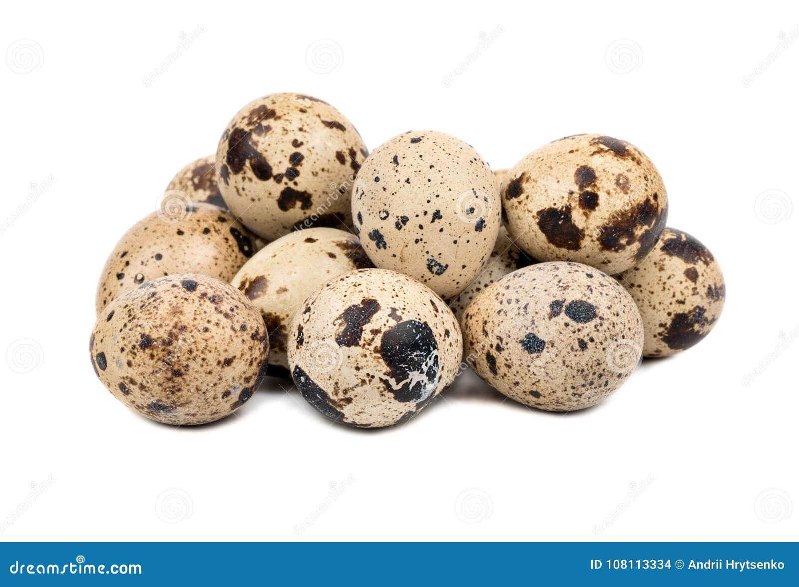 σαν αυγά ανασκόπησης πολλές νησοπέρδικες