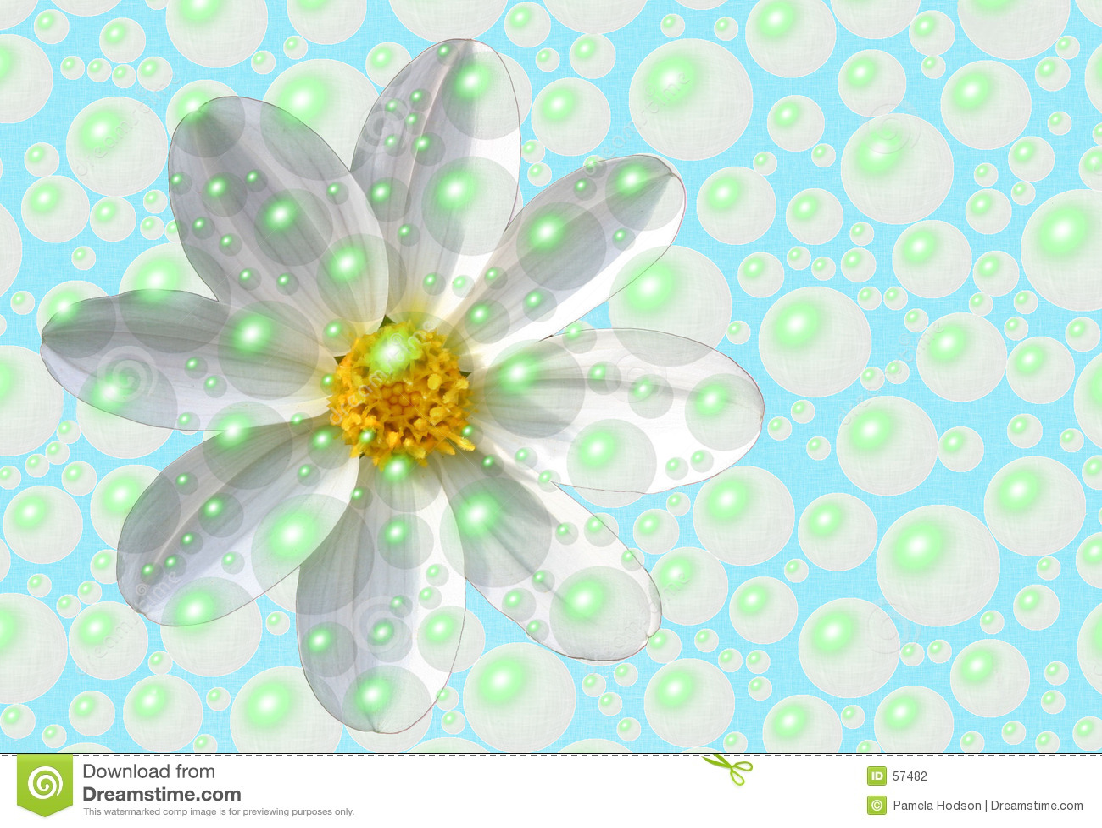 Download σαν μαργαρίτα φρέσκια απεικόνιση αποθεμάτων. εικονογραφία από σύσταση - 57482