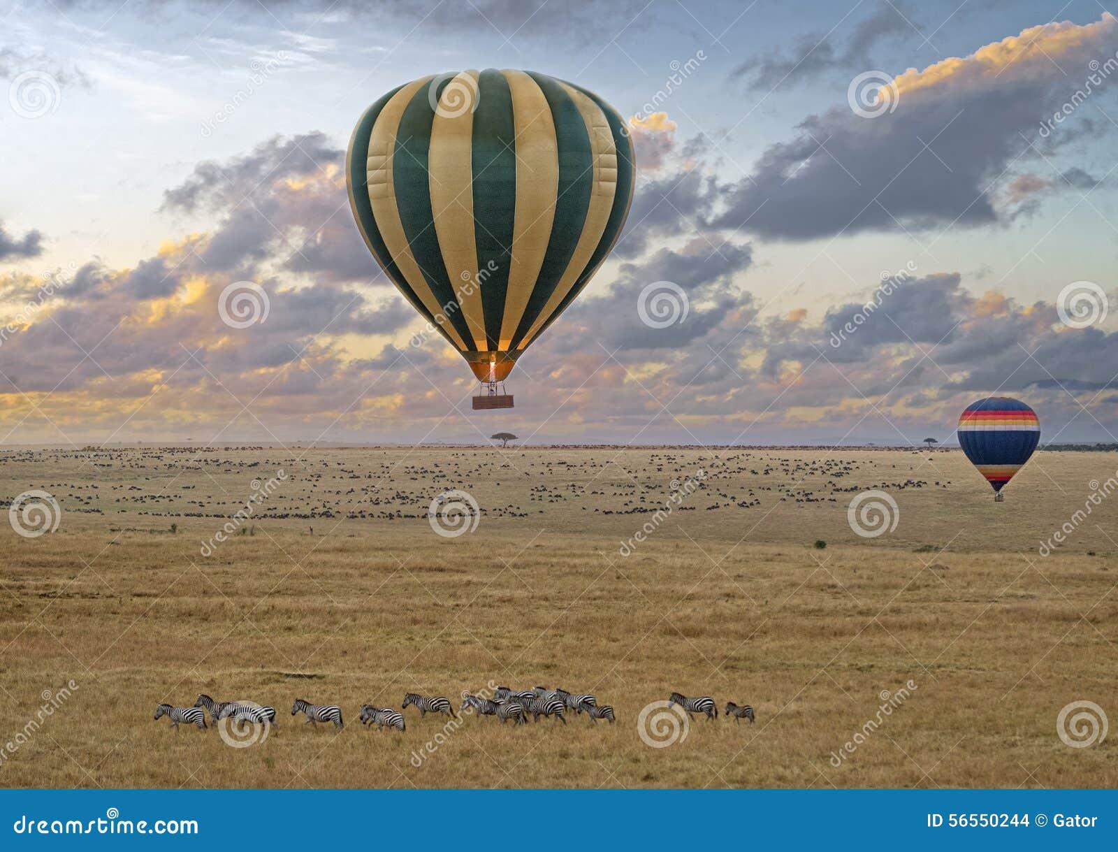 Download Σαφάρι μπαλονιών στοκ εικόνες. εικόνα από ζωηρόχρωμος - 56550244