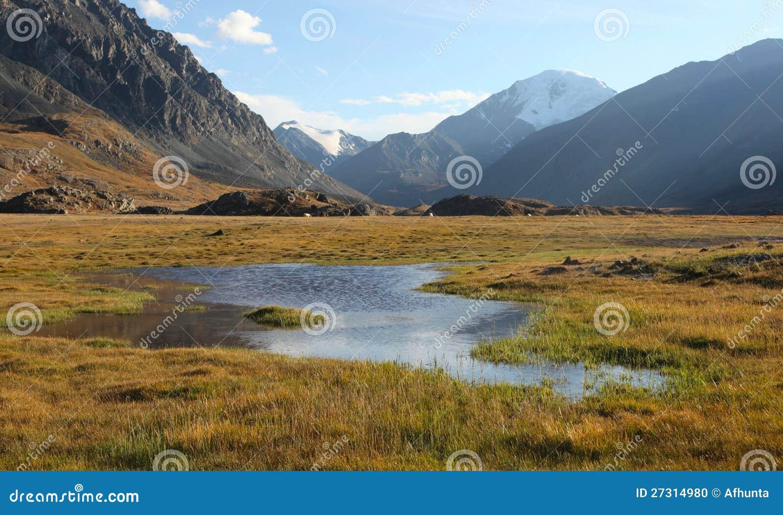 Σιβηρικό αλπικό Tundra