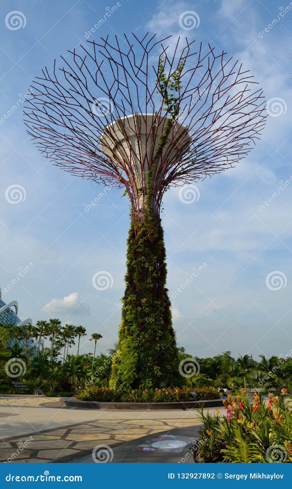 Σιγκαπούρη - 28 Απριλίου 2014: Supertree στους κήπους από τον κόλπο