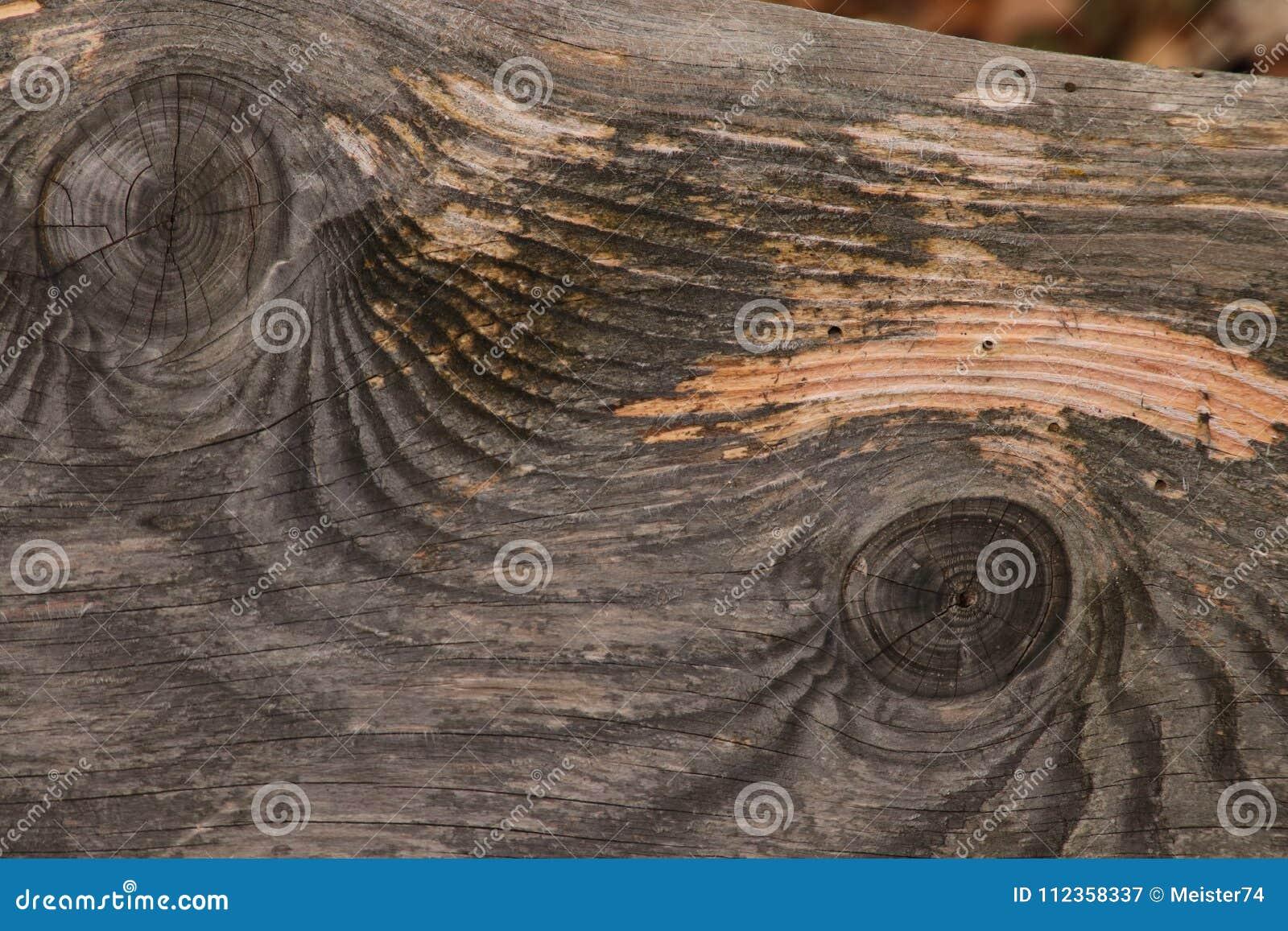 σιτάρι του ξύλου