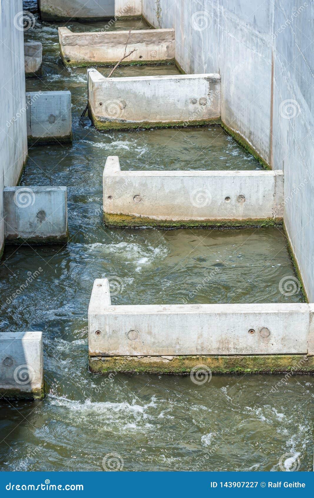 Σκάλα ψαριών ως προστασία για τα ψάρια weir