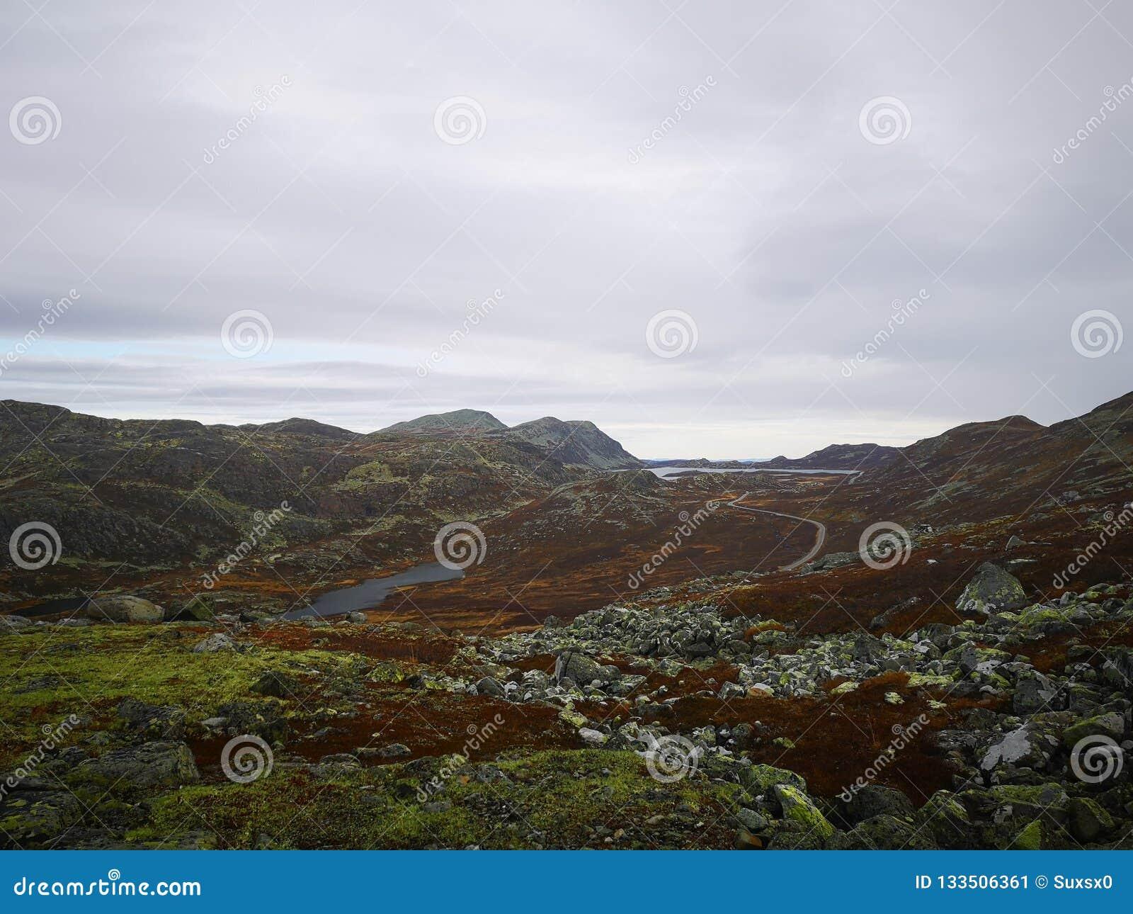 Σκηνή από το narvik