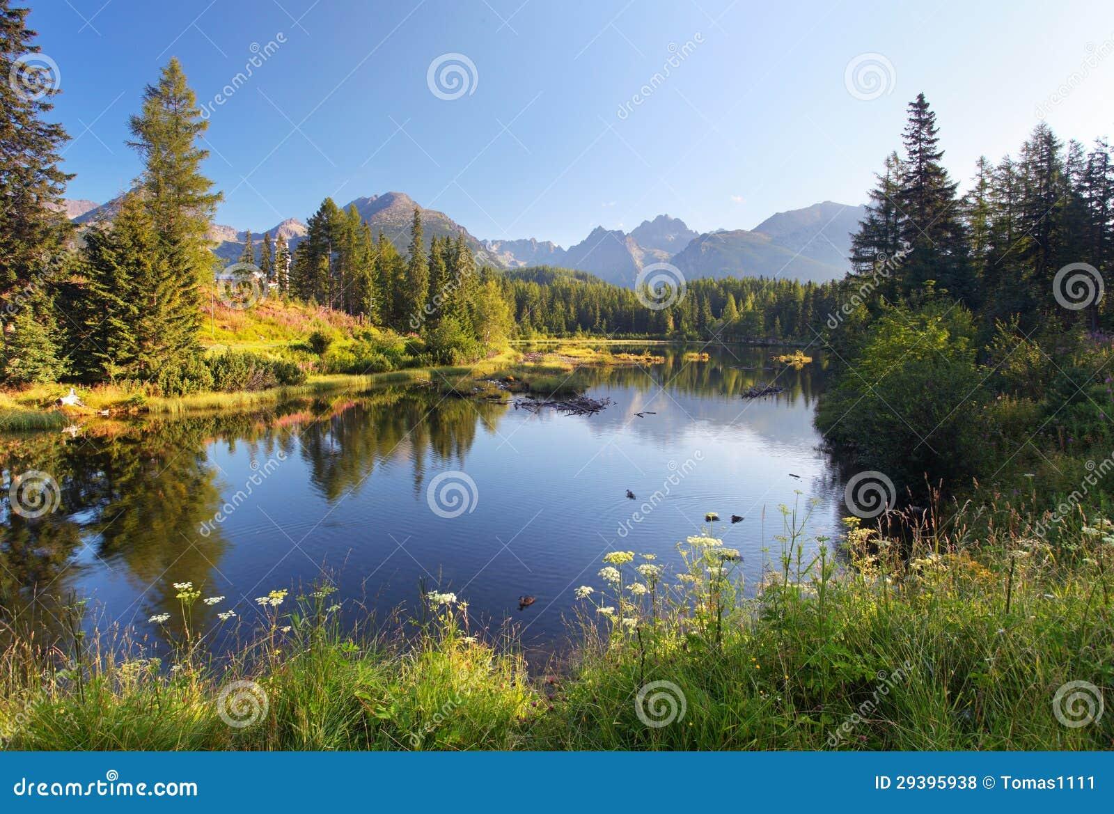 Σκηνή βουνών φύσης με την όμορφη λίμνη στη Σλοβακία Tatra