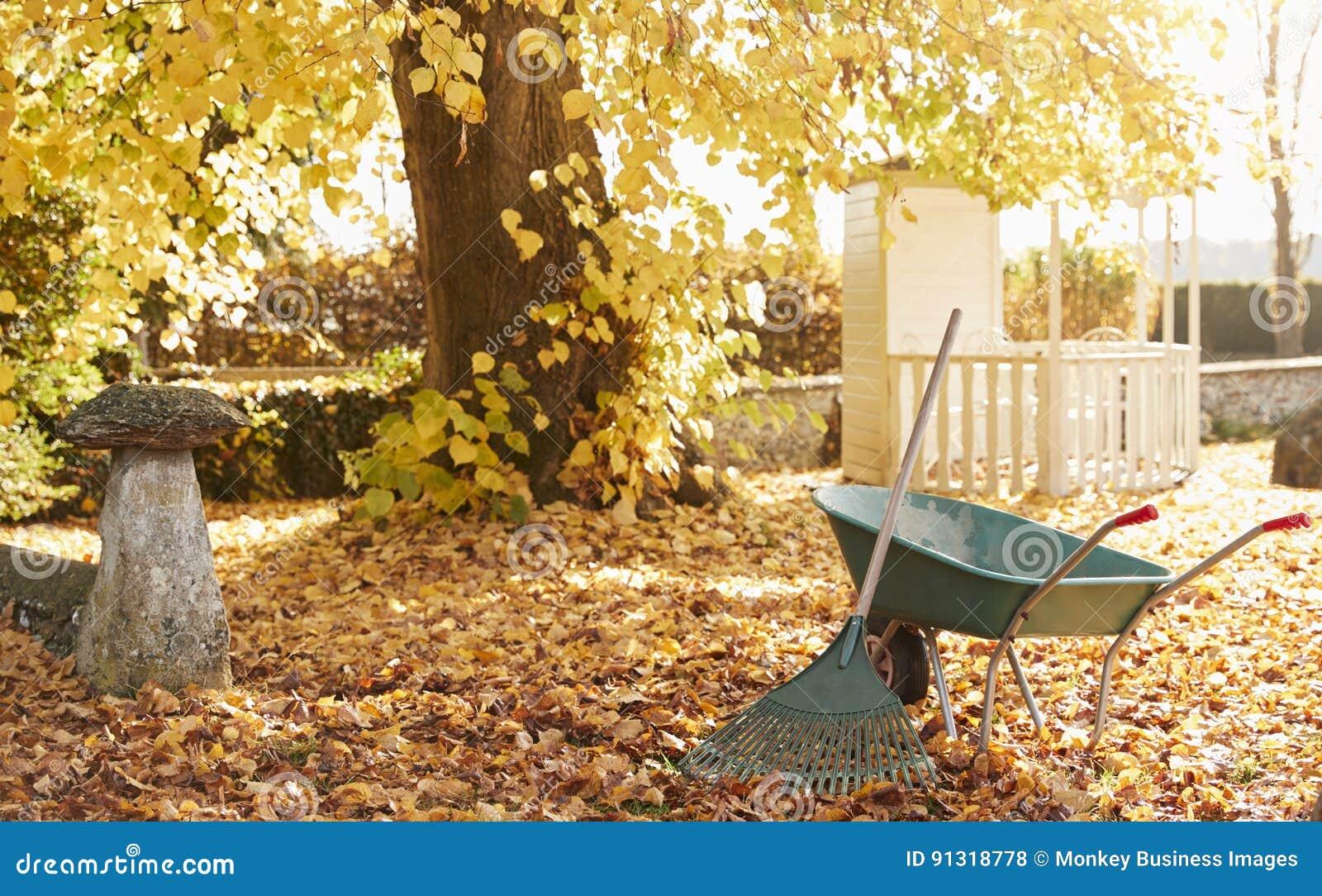 Σκηνή κήπων φθινοπώρου με την τσουγκράνα και Wheelbarrow