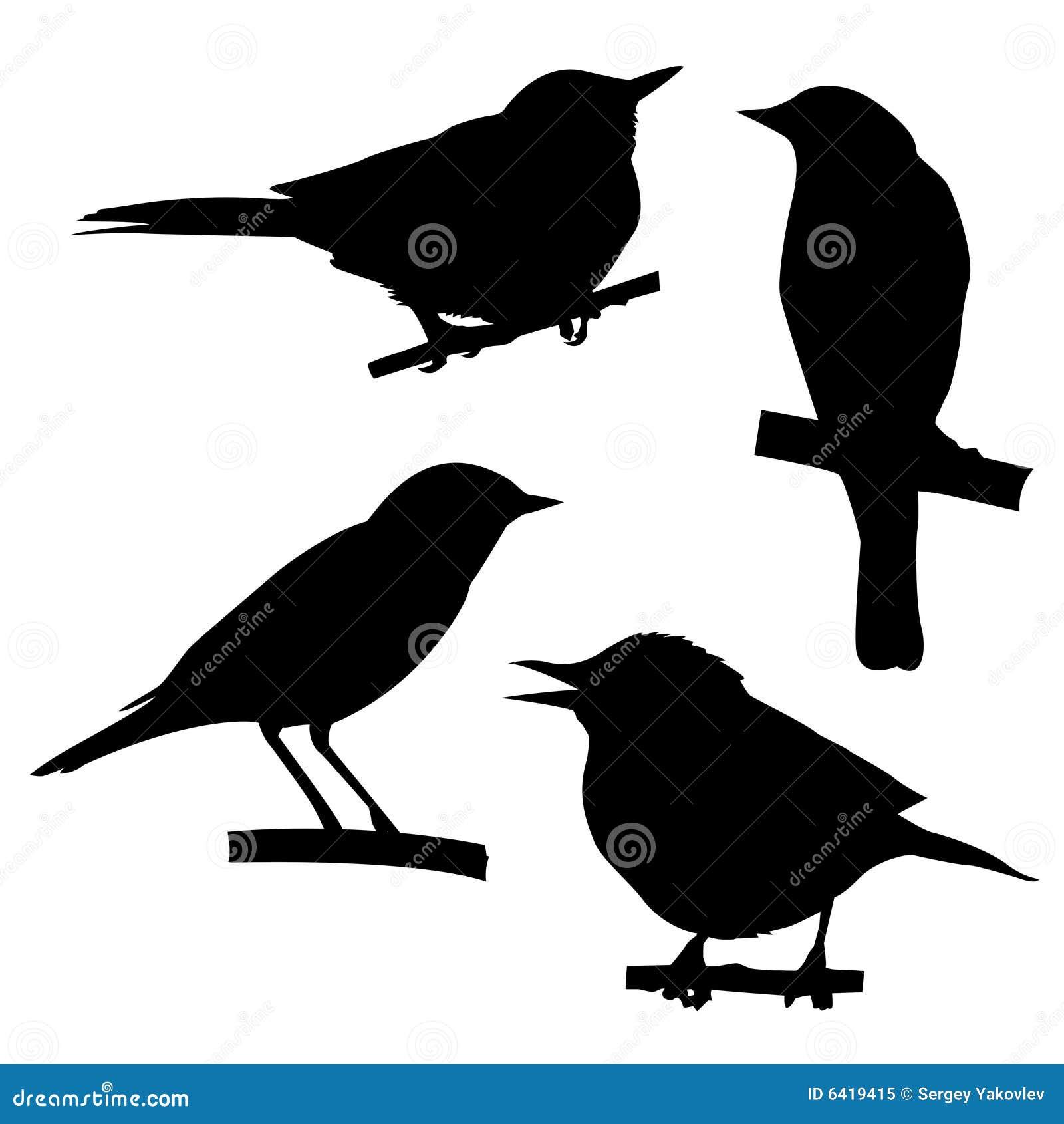 σκιαγραφίες πουλιών