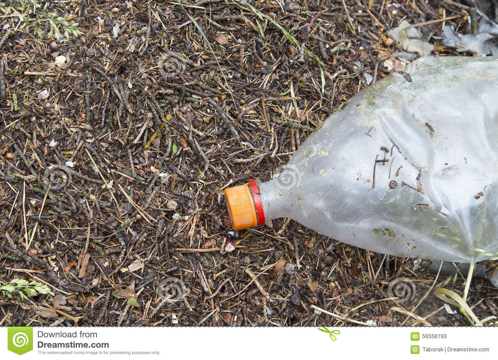 Download Σκουπίδια στο δάσος στοκ εικόνα. εικόνα από ρύπανση, διάθεση - 56556193