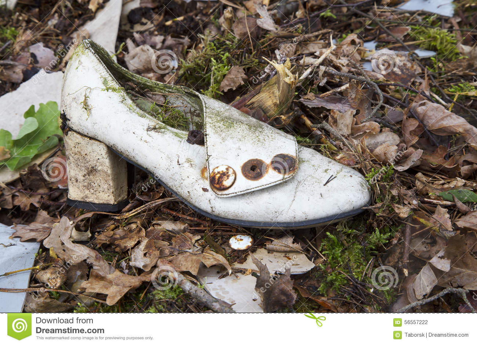 Download Σκουπίδια στο δάσος στοκ εικόνες. εικόνα από περιοχής - 56557222