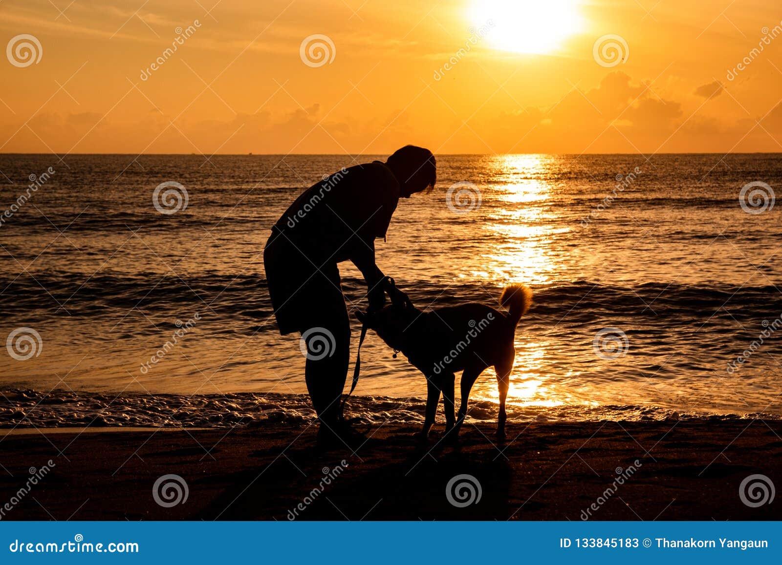 Σκυλί και ιδιοκτήτης που περπατούν και που παίζουν μαζί στην παραλία θάλασσας με το όμορφο υπόβαθρο φωτός του ήλιου στις διακοπές