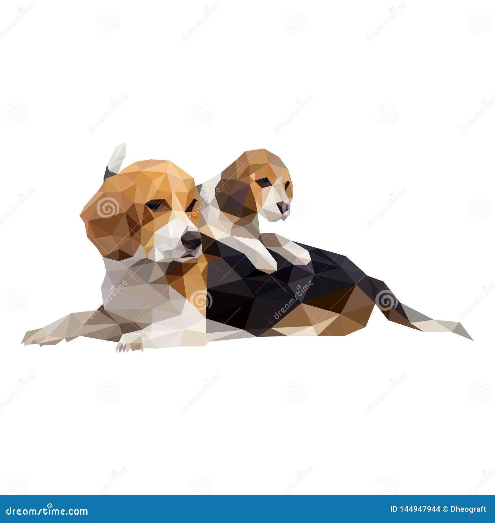 Σκυλιά, Polygonal τέχνη