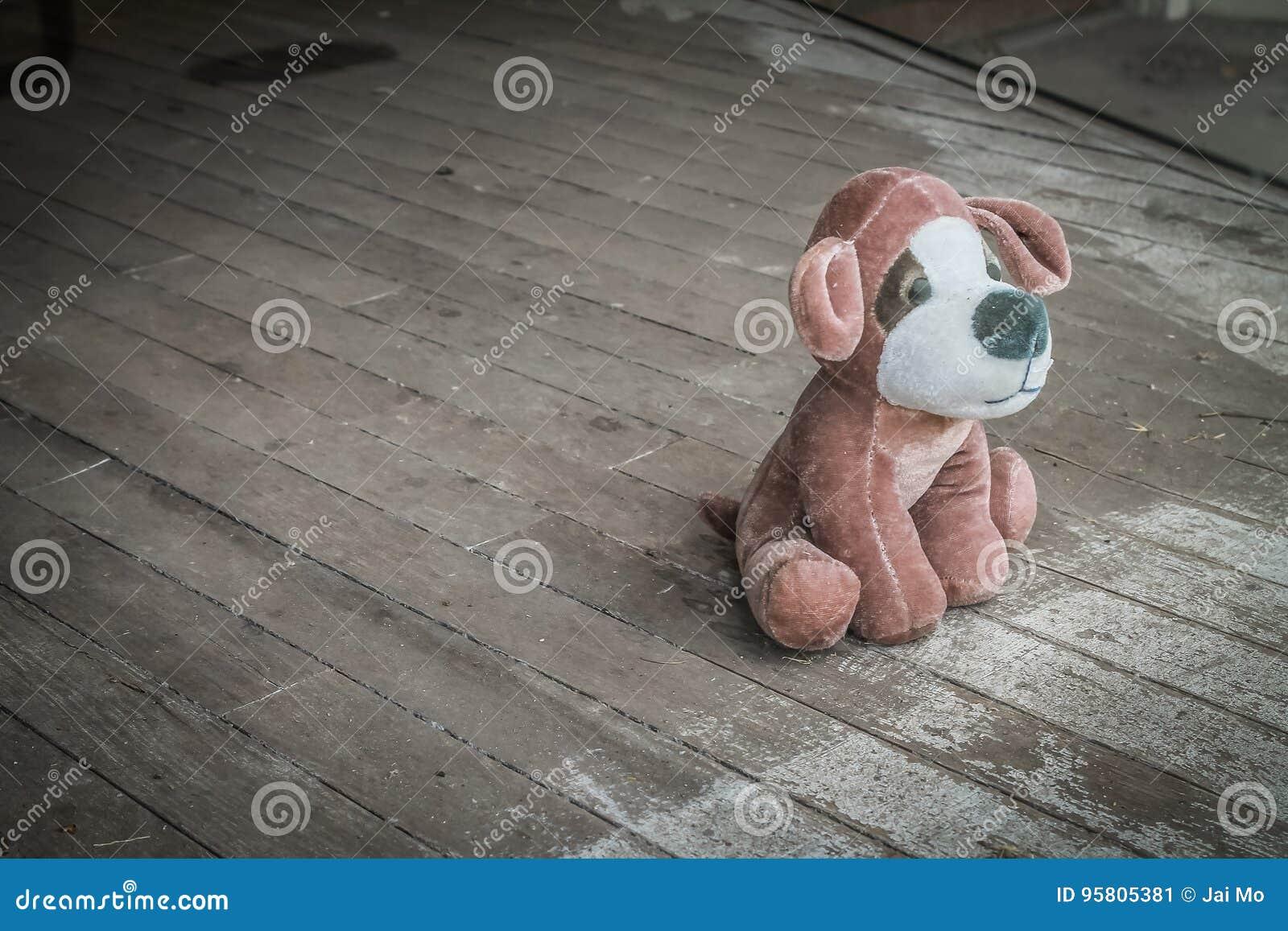 Σκυλί παιχνιδιών βελούδου που εγκαταλείπεται