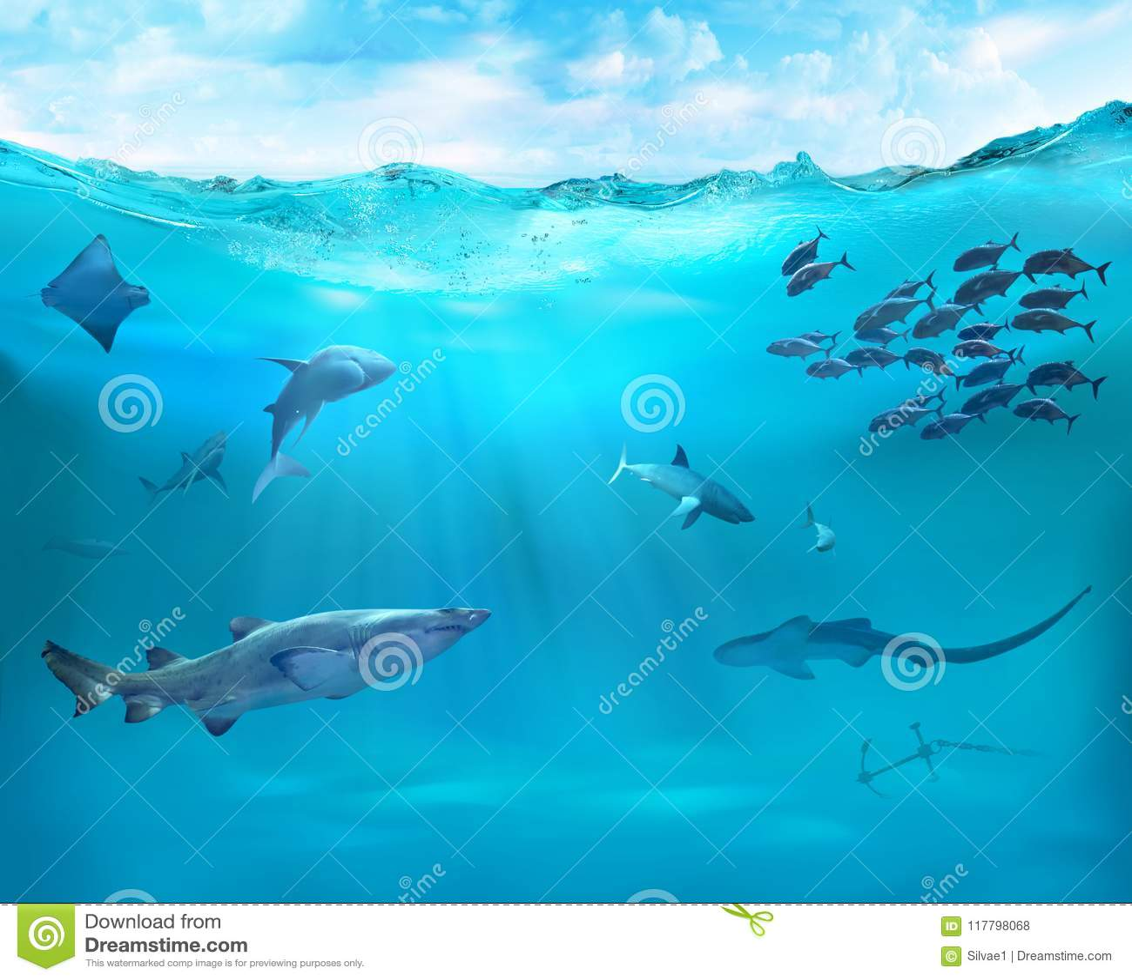 Σκόπελος με τα θαλάσσια ζώα