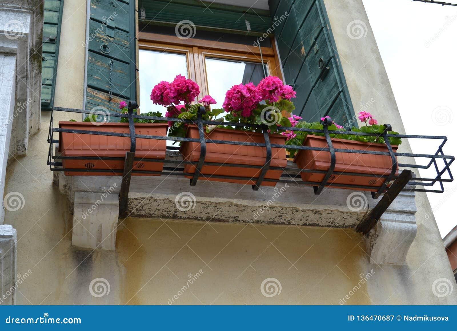 Σπίτι της Βενετίας που διακοσμείται με τα πλαστικά βάζα γερανιών λουλουδιών που τίθενται στα αρχαία μπαλκόνια σε μια ηλιόλουστη η