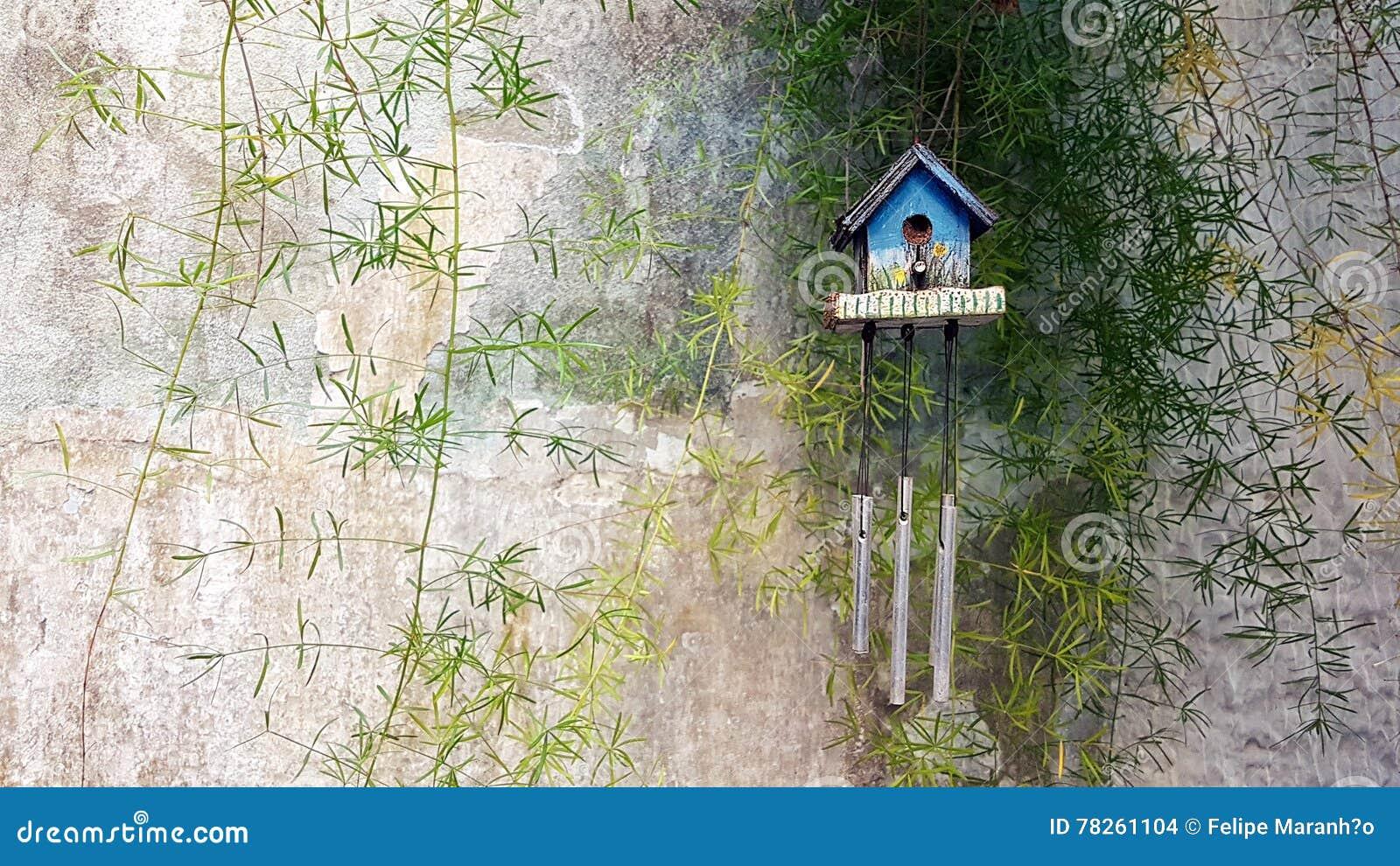 Σπίτι της Zen