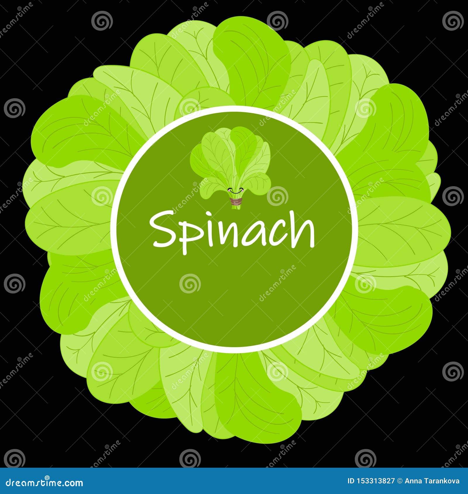 Σπανάκι Χαριτωμένος διανυσματικός χαρακτήρας τροφίμων κινούμενων σχεδίων vegan πρωτεϊνικός - σύνολο που απομονώνεται στο λευκό