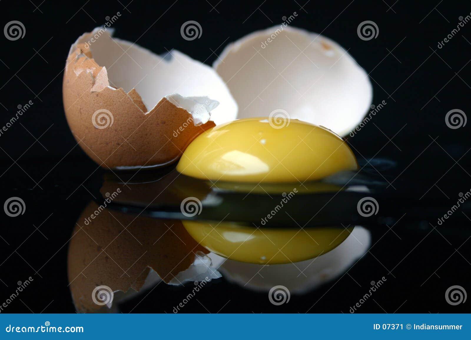 σπασμένη ζωή αυγών ακόμα