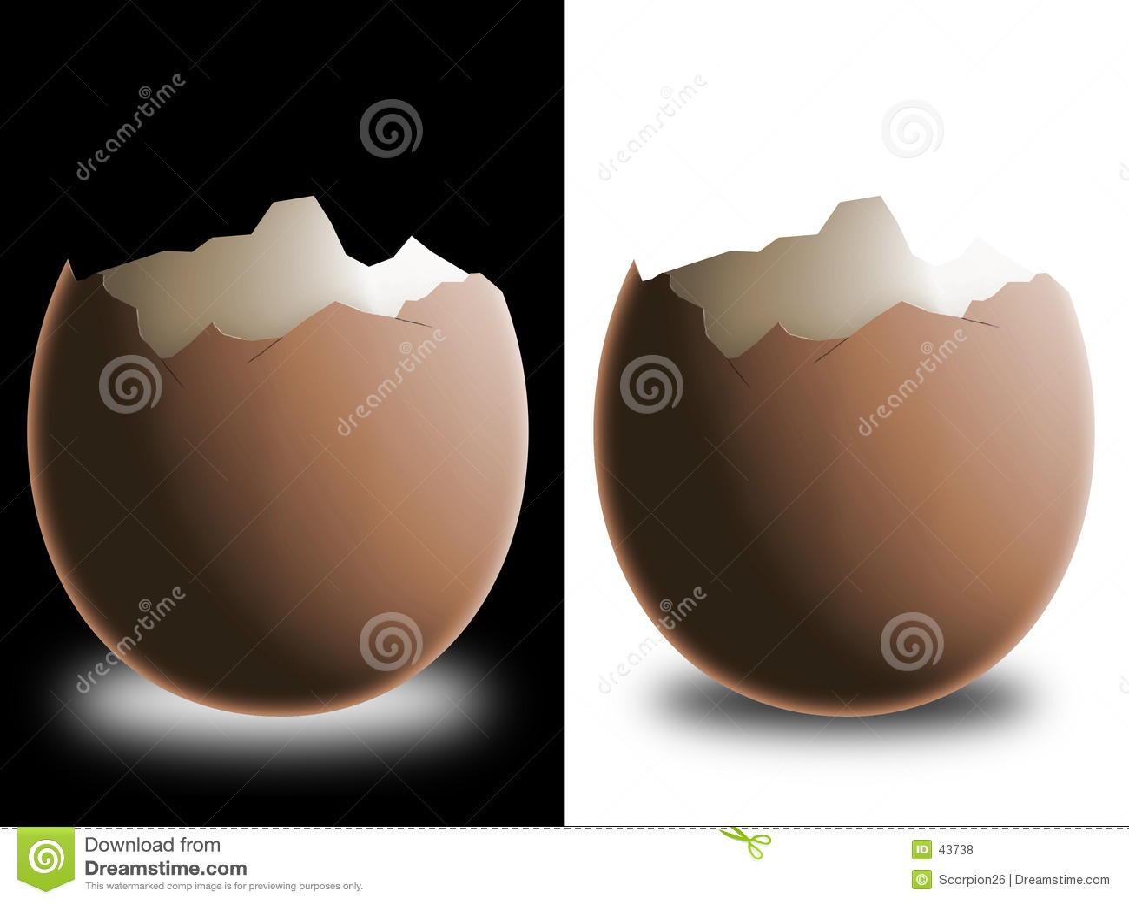 σπασμένο eggshell
