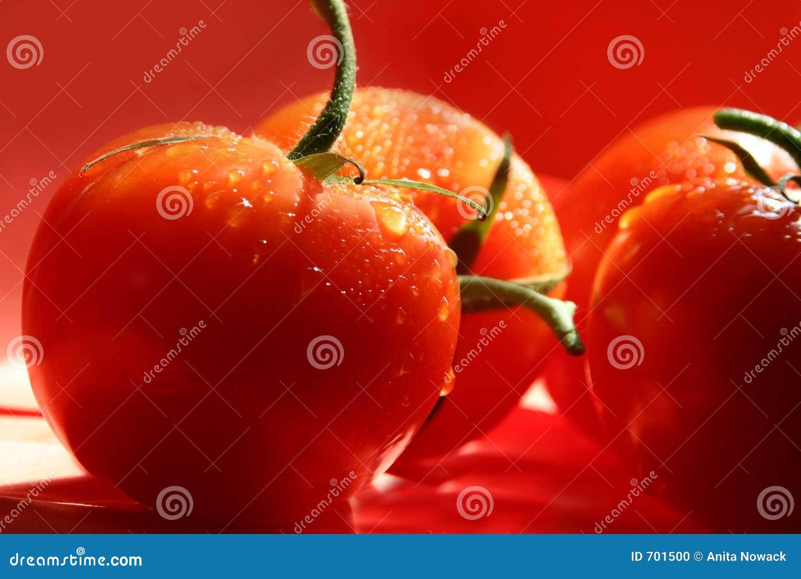 στάζοντας κόκκινες ντομά&tau