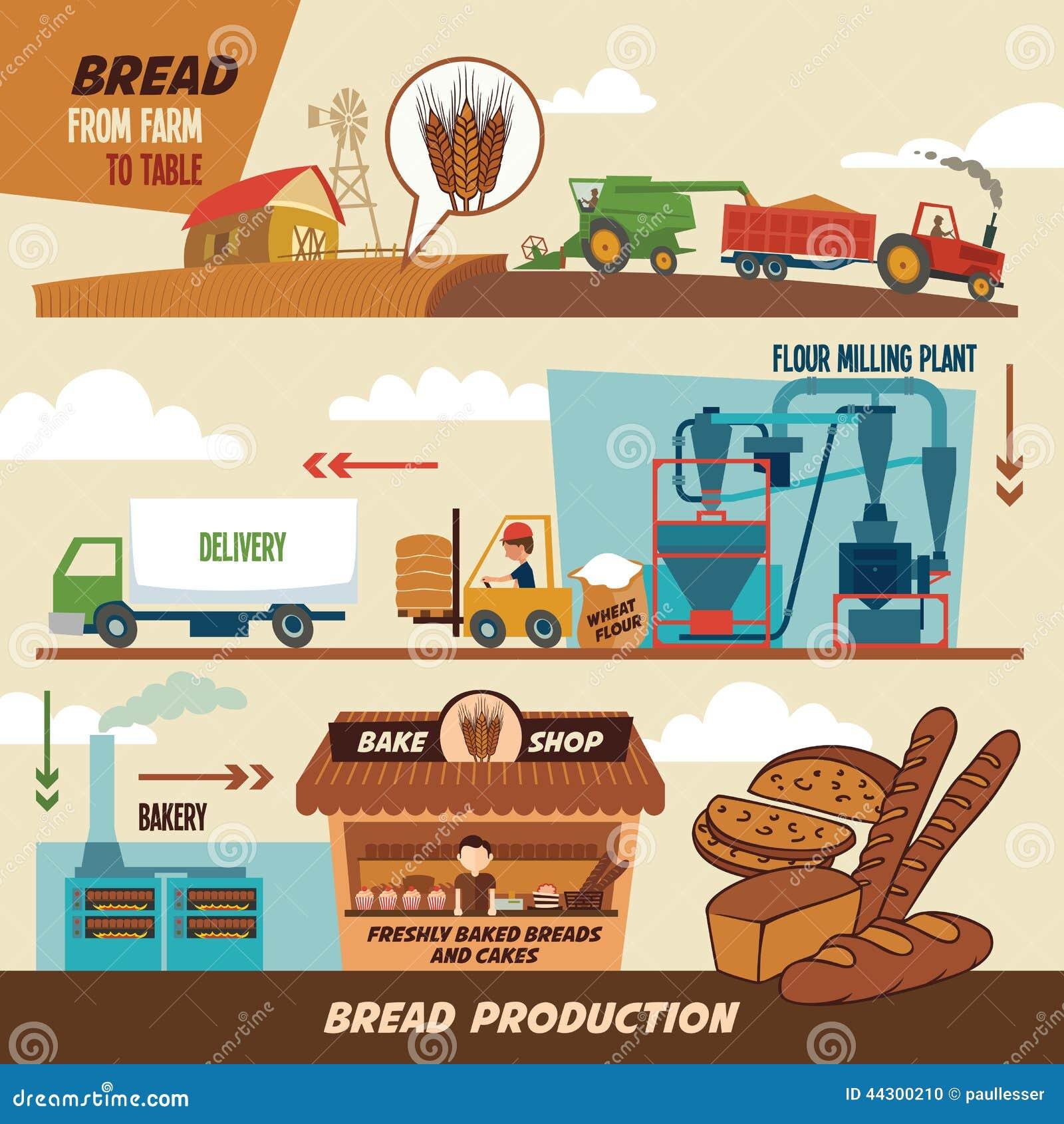 Στάδια παραγωγής ψωμιού