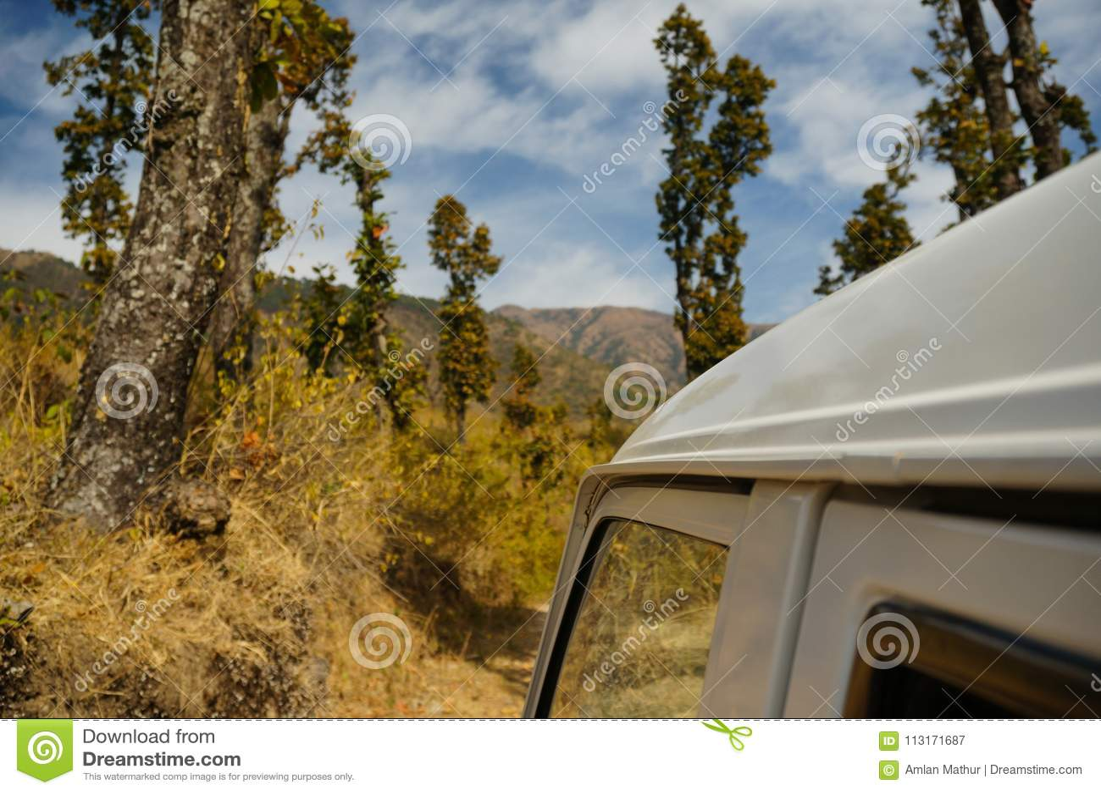 Στέγη ενός αυτοκινήτου που βλασταίνεται ενάντια στα τεράστια δέντρα σε Dehradun Ινδία