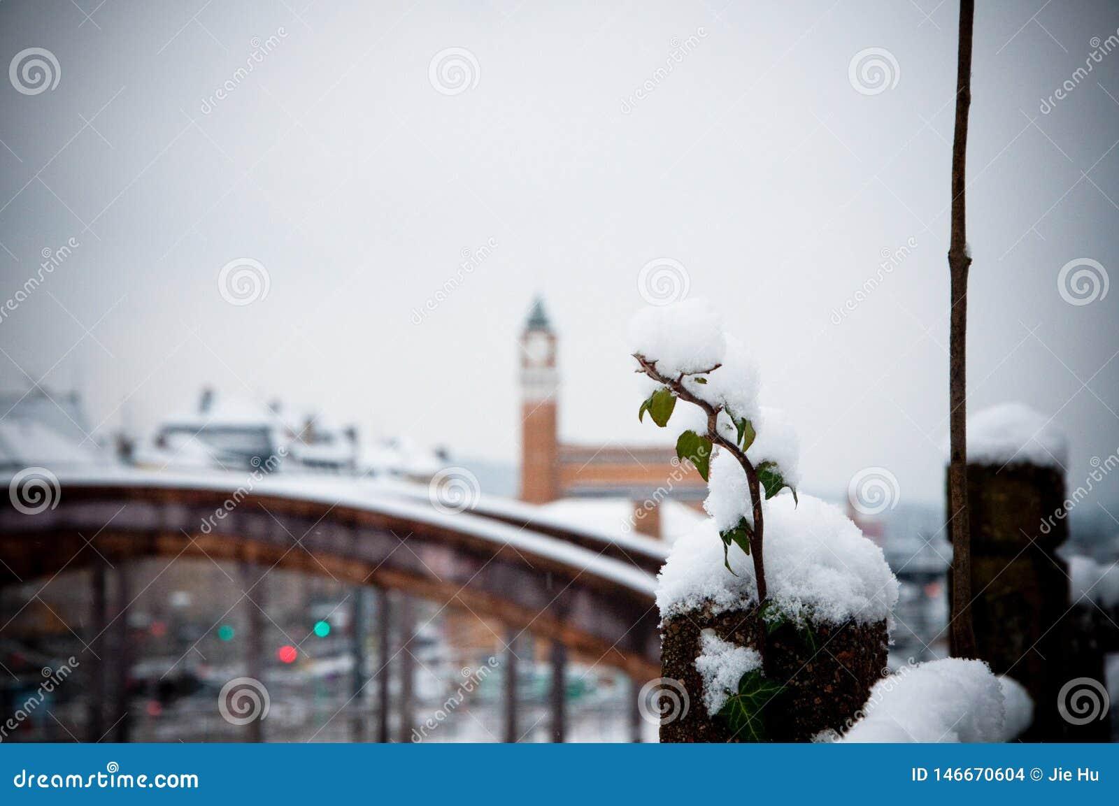 Σταθμός τρένου το χειμώνα