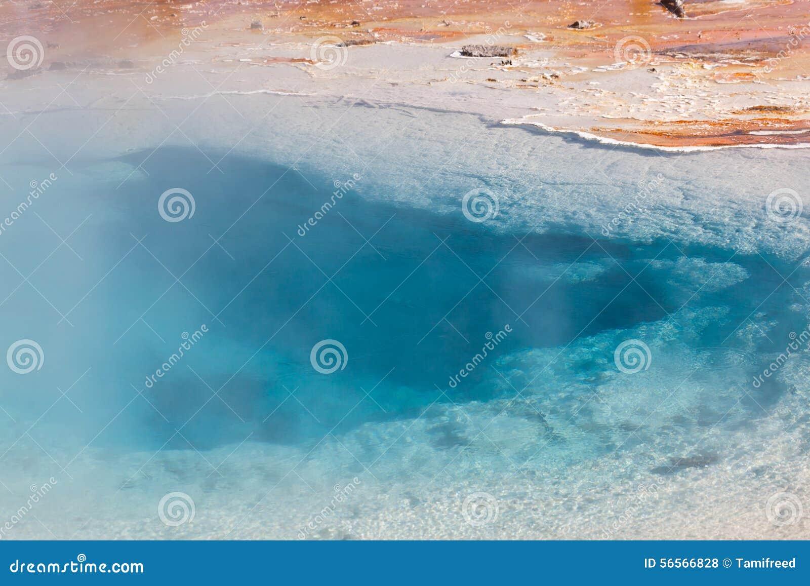 Download Στενός επάνω ανοίξεων Silex Στοκ Εικόνες - εικόνα από βακκινίων, north: 56566828