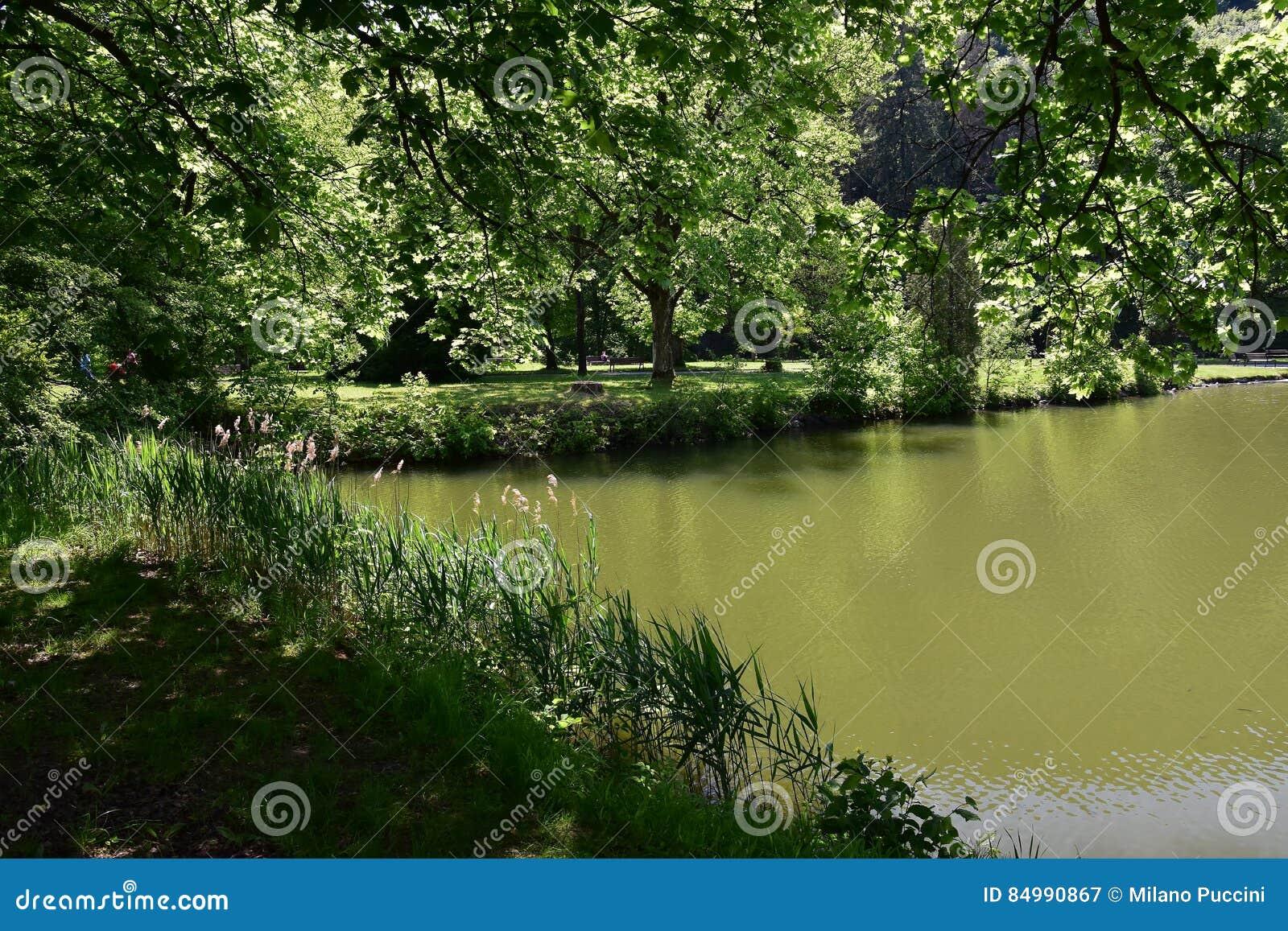 Στην άκρη της λίμνης