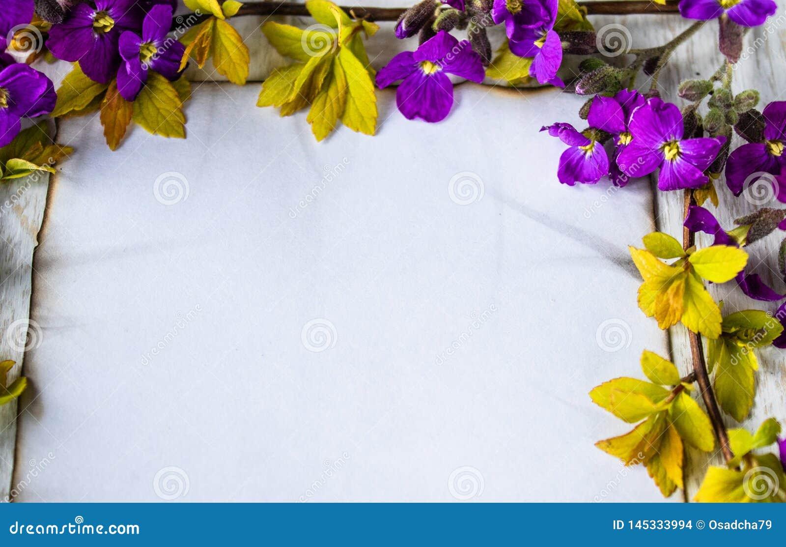 Στους λευκούς ξύλινους πίνακες, τους κλάδους με τα κίτρινα φύλλα και τα πορφυρά λουλούδια, ένα άσπρο φύλλο του εγγράφου έκαψε στι