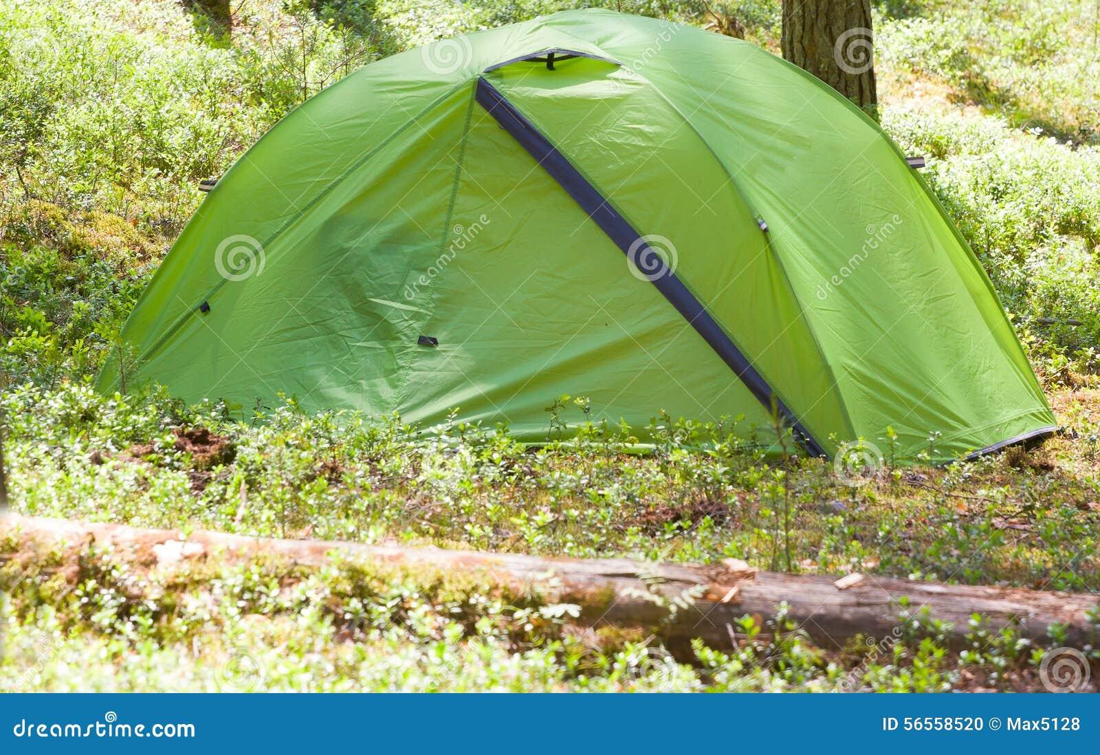 Download Στρατοπέδευση υπαίθρια με τη σκηνή στα ξύλα το καλοκαίρι Στοκ Εικόνες - εικόνα από lifestyle, χλόη: 56558520